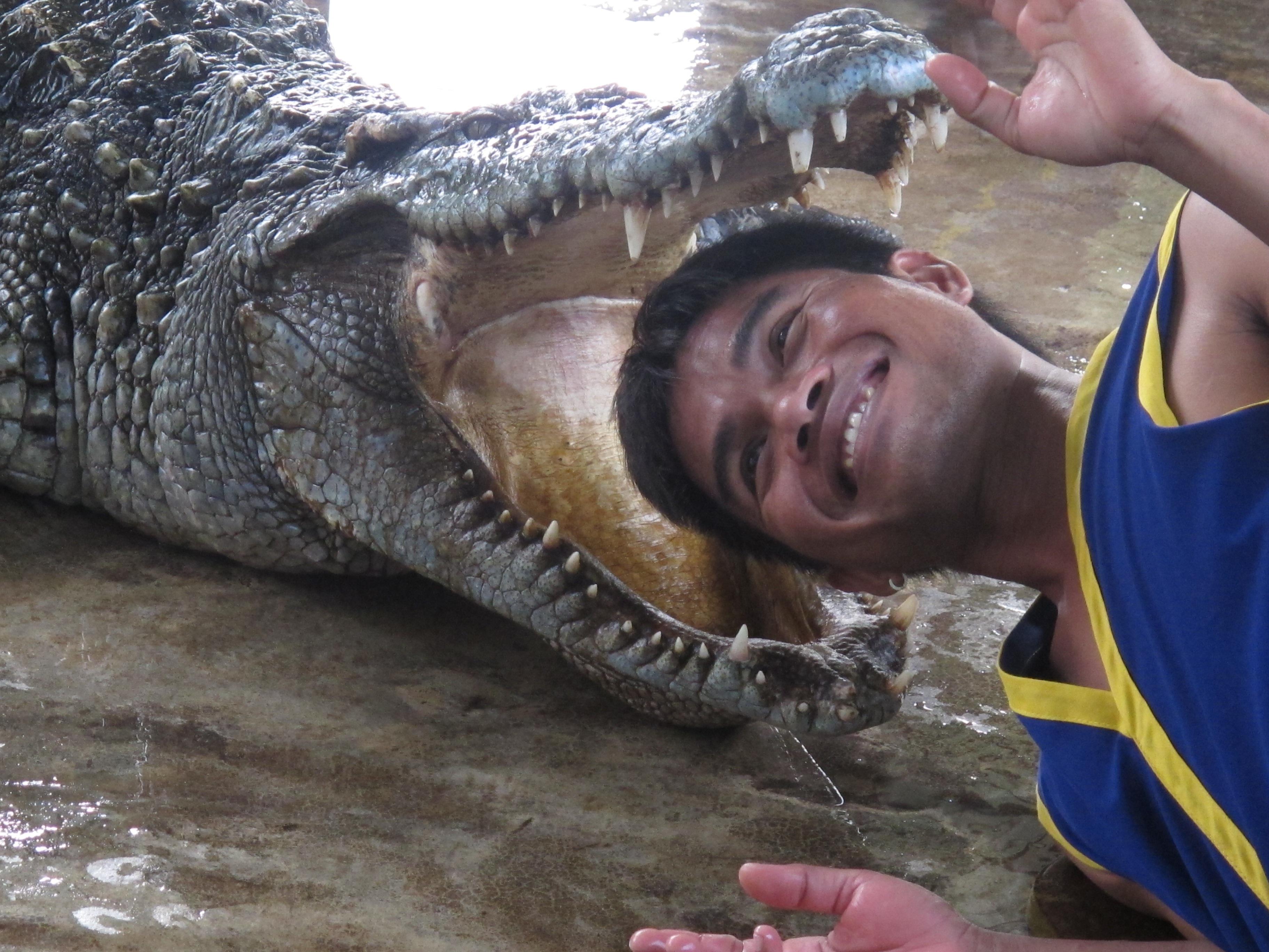 Gambar Tangan Lumpur Reptil Fokus Bertulang Belakang