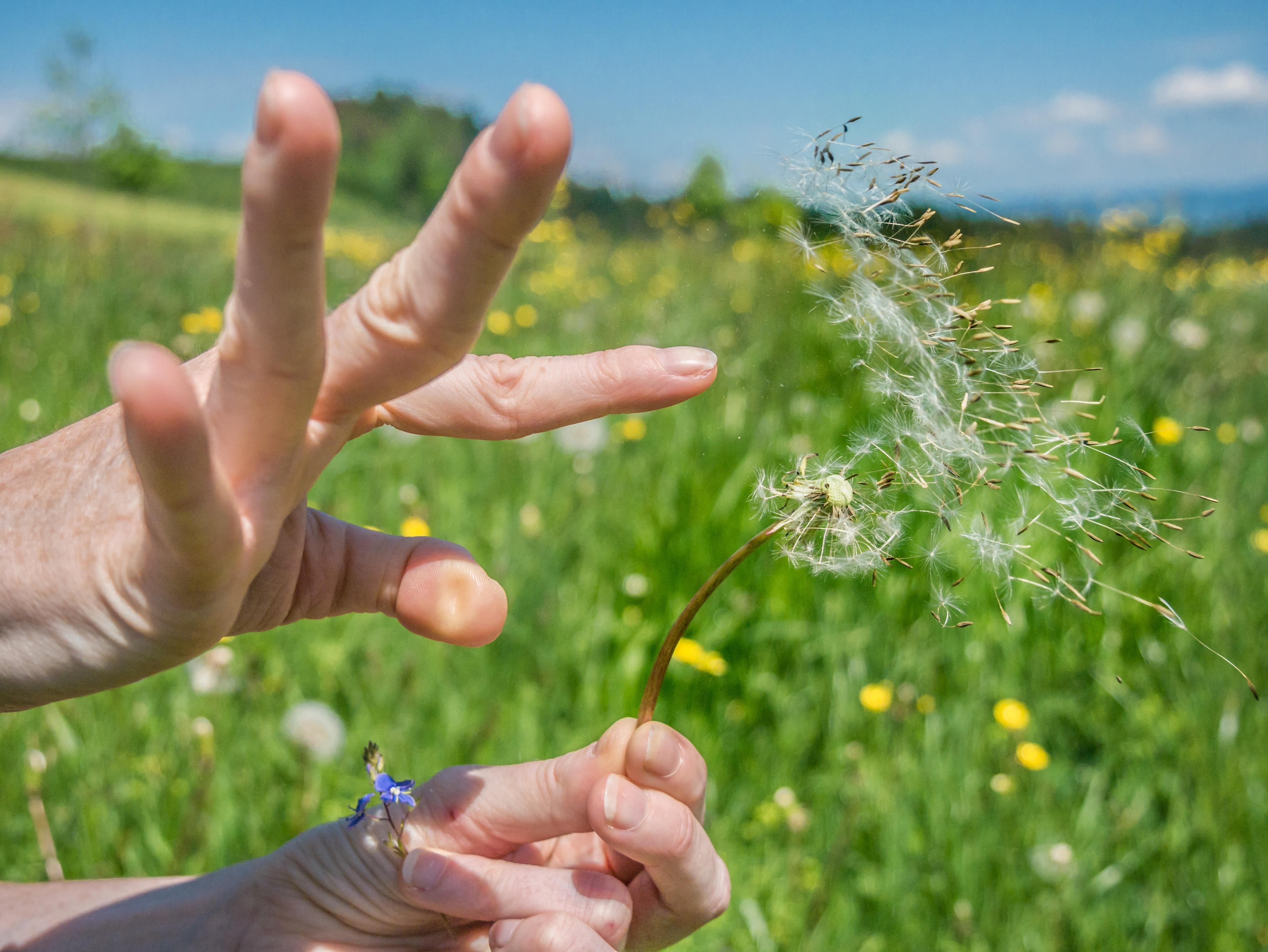 Природа в руках картинки