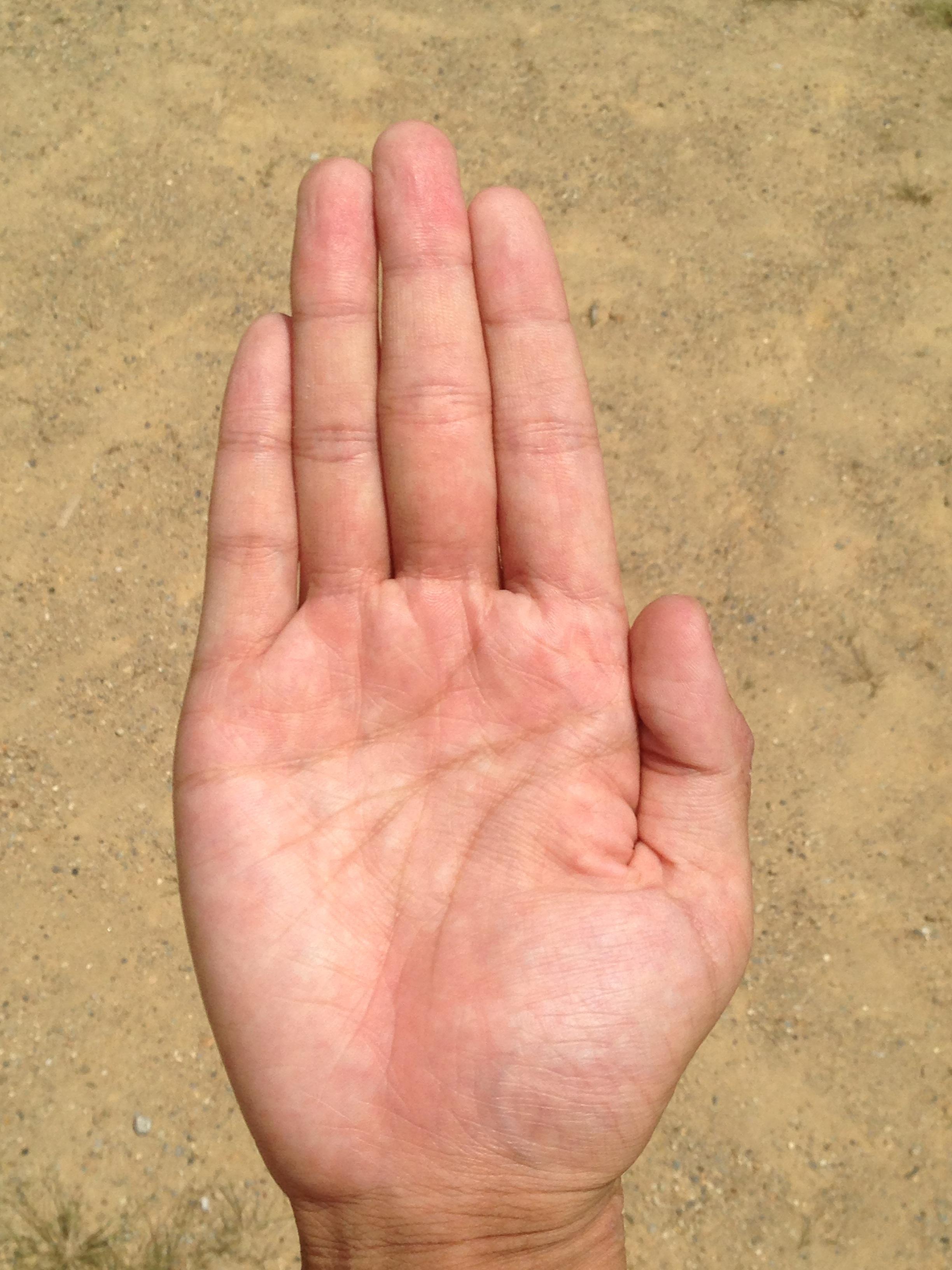 Hand Screen Man Beach Sea Coast People Woman Pot Male Leg Young Finger Reflection Palm Soil