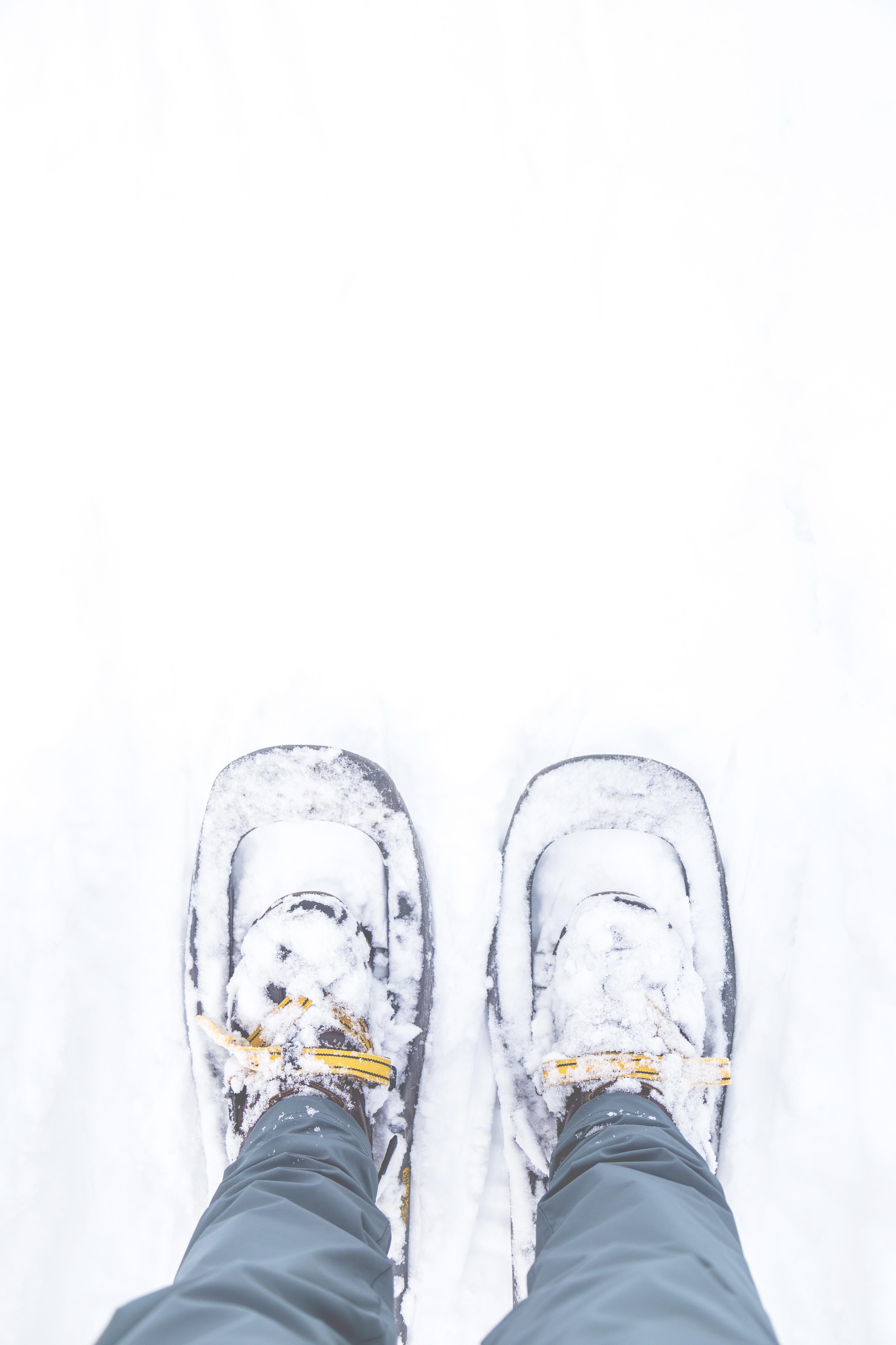 Cara Menggambar Sketsa Sepatu