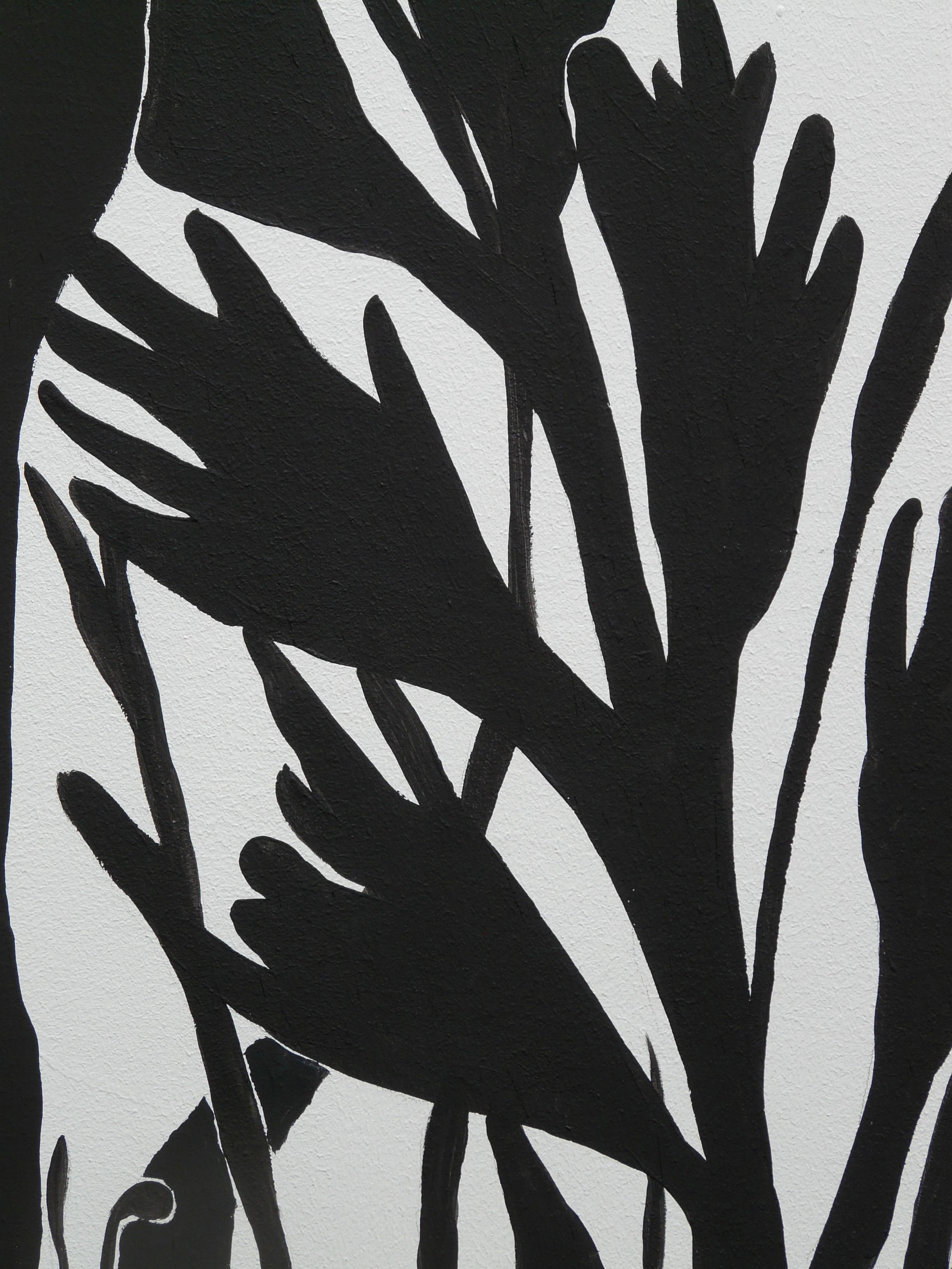 Images Gratuites Main Silhouette Abstrait Noir Et Blanc Plante