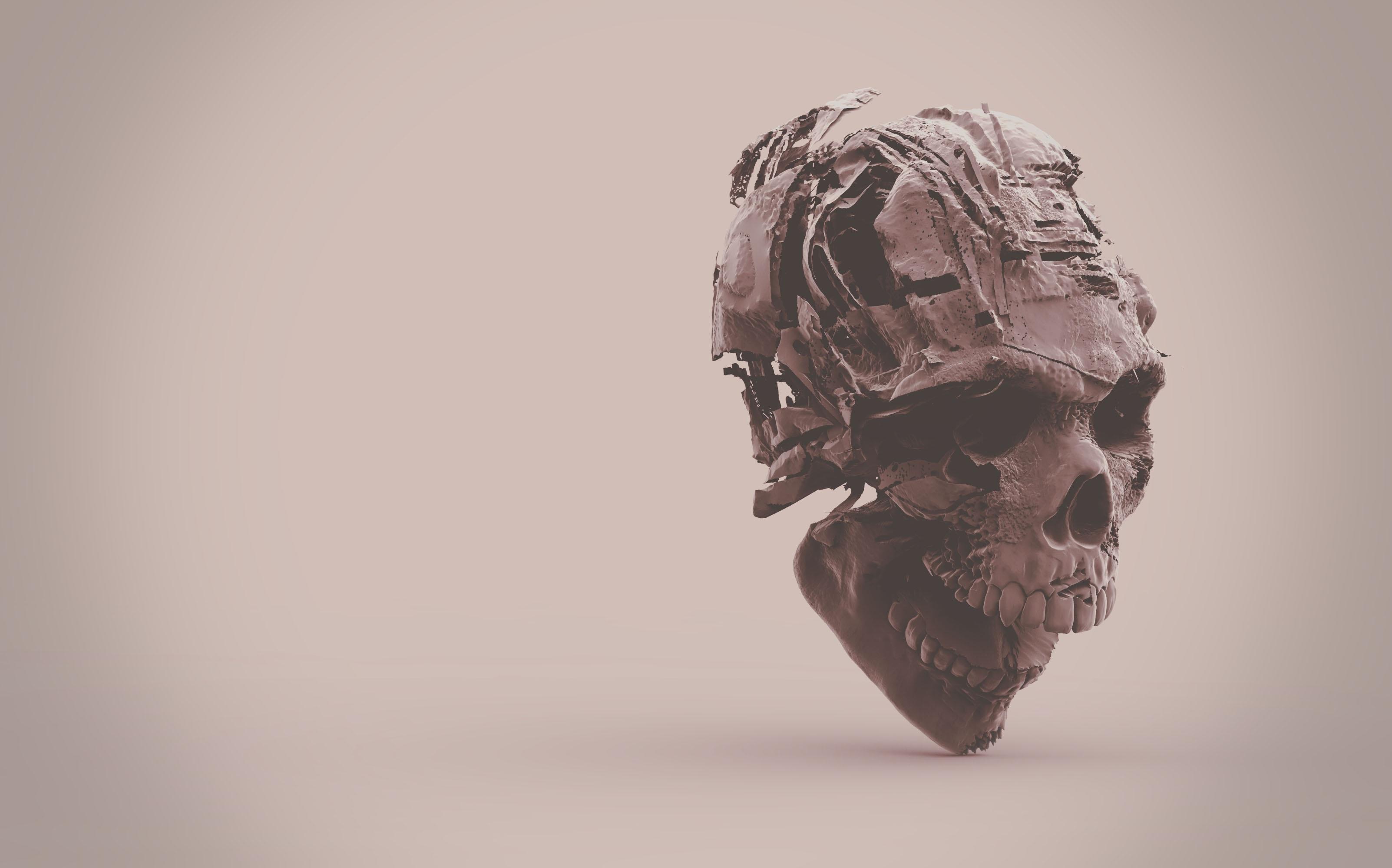 Fotos gratis : mano, cráneo, hueso, de cerca, cuerpo humano ...