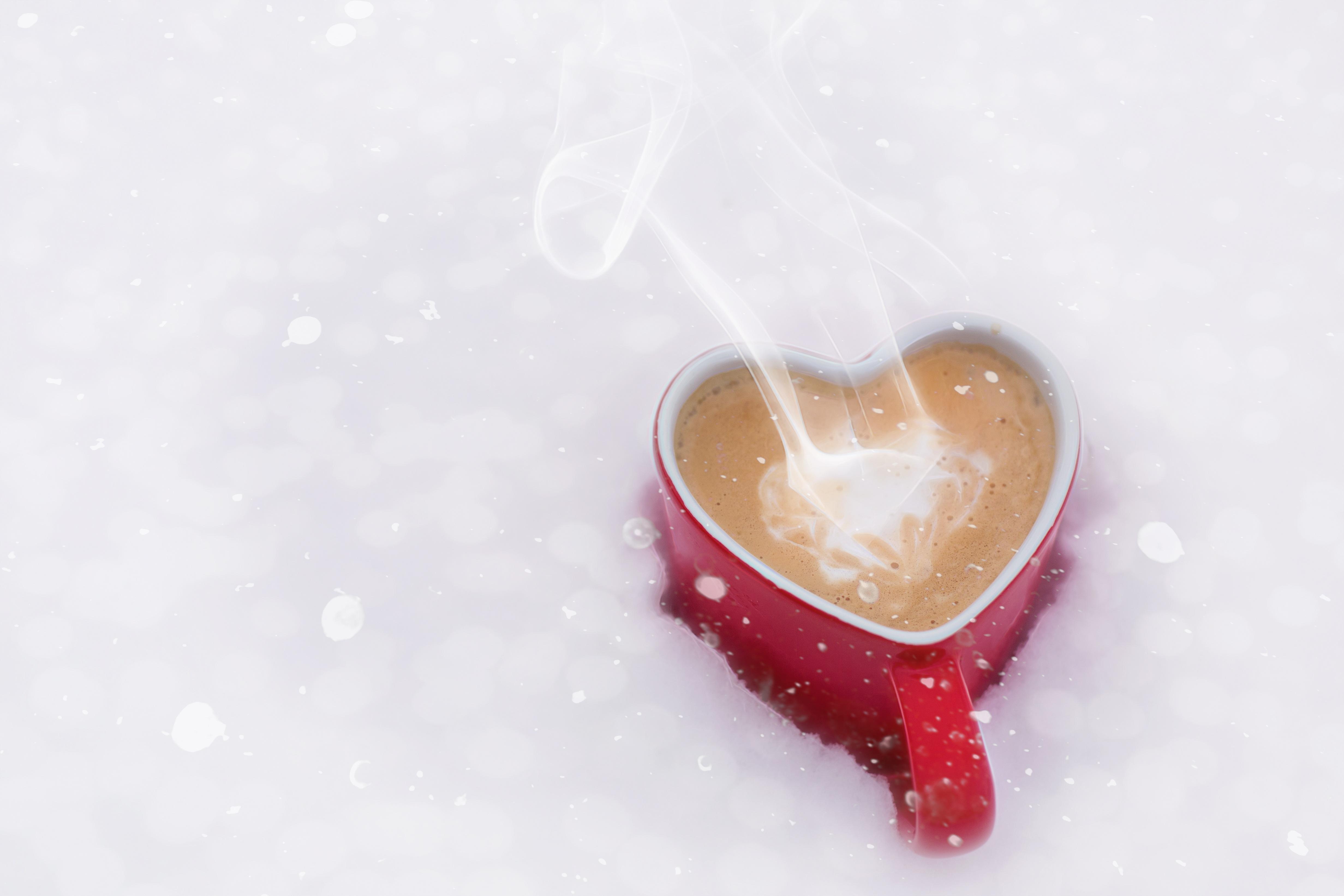 Hand Snow Winter Coffee Petal Love Weather Romantic Close Up Organ Valentine  Melting Freezing Macro Photography