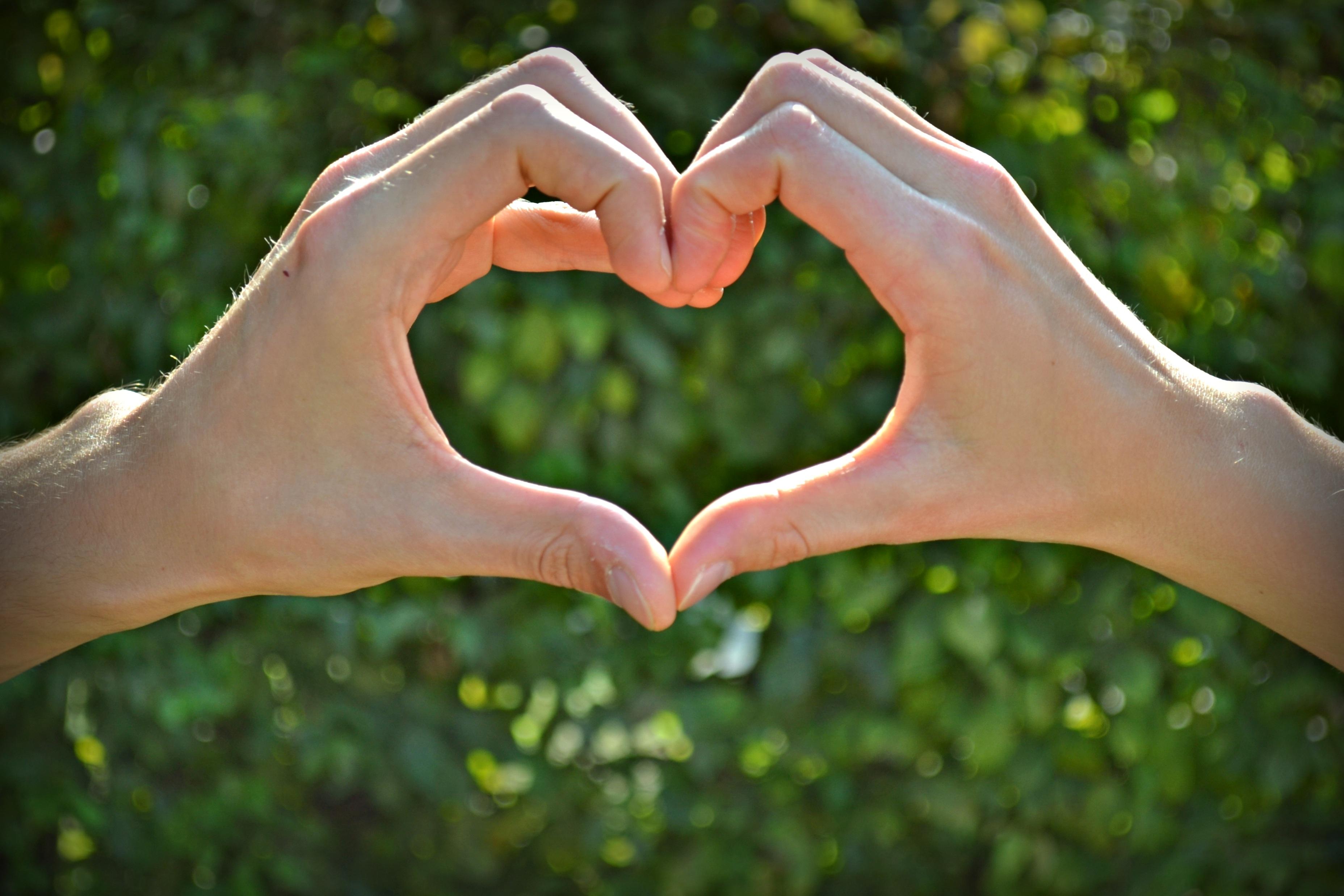 фото сердечек из рук потребуется обеспечить солнечный