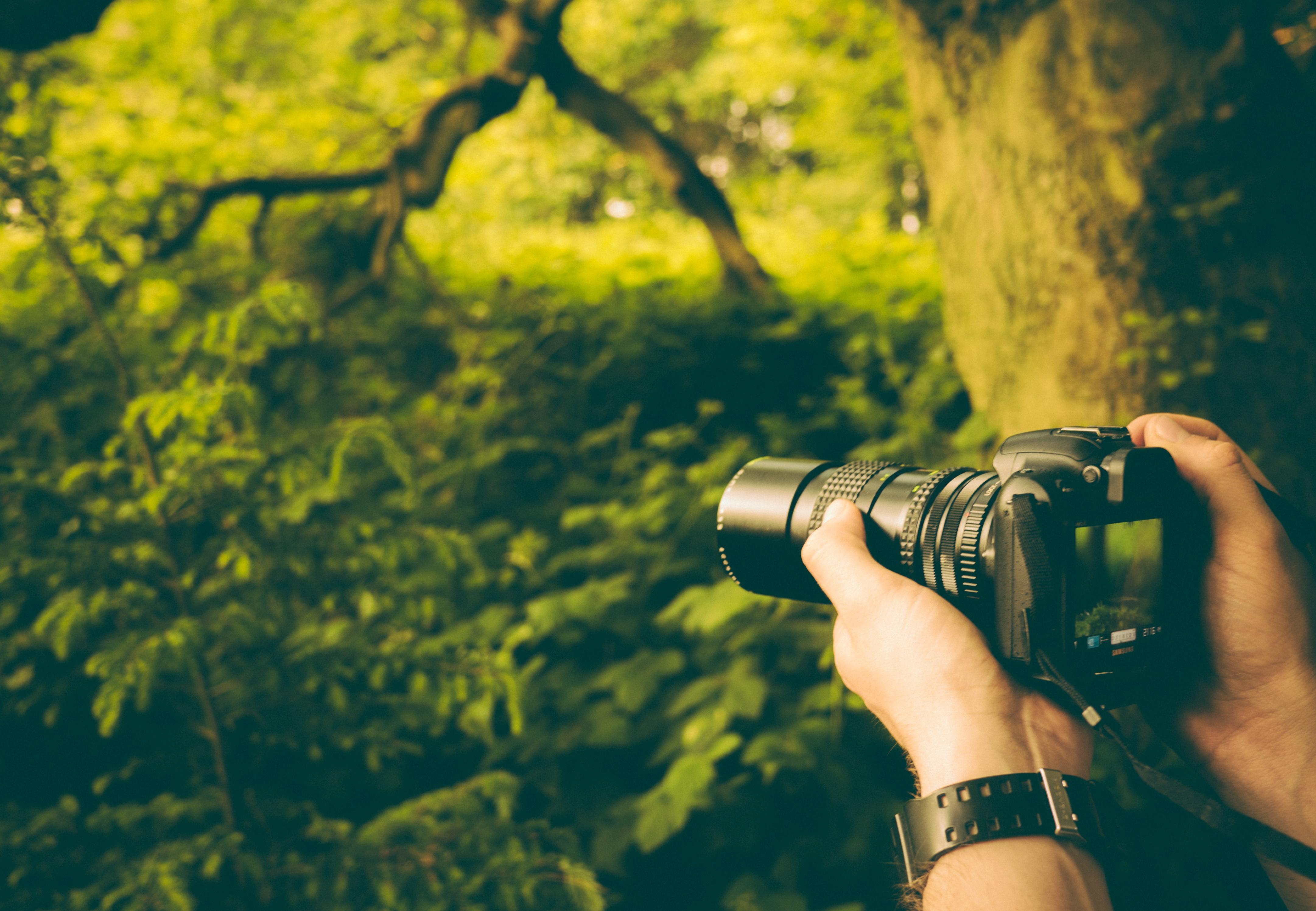 одежда фото сделанные с профессионального фотоаппарата принципе