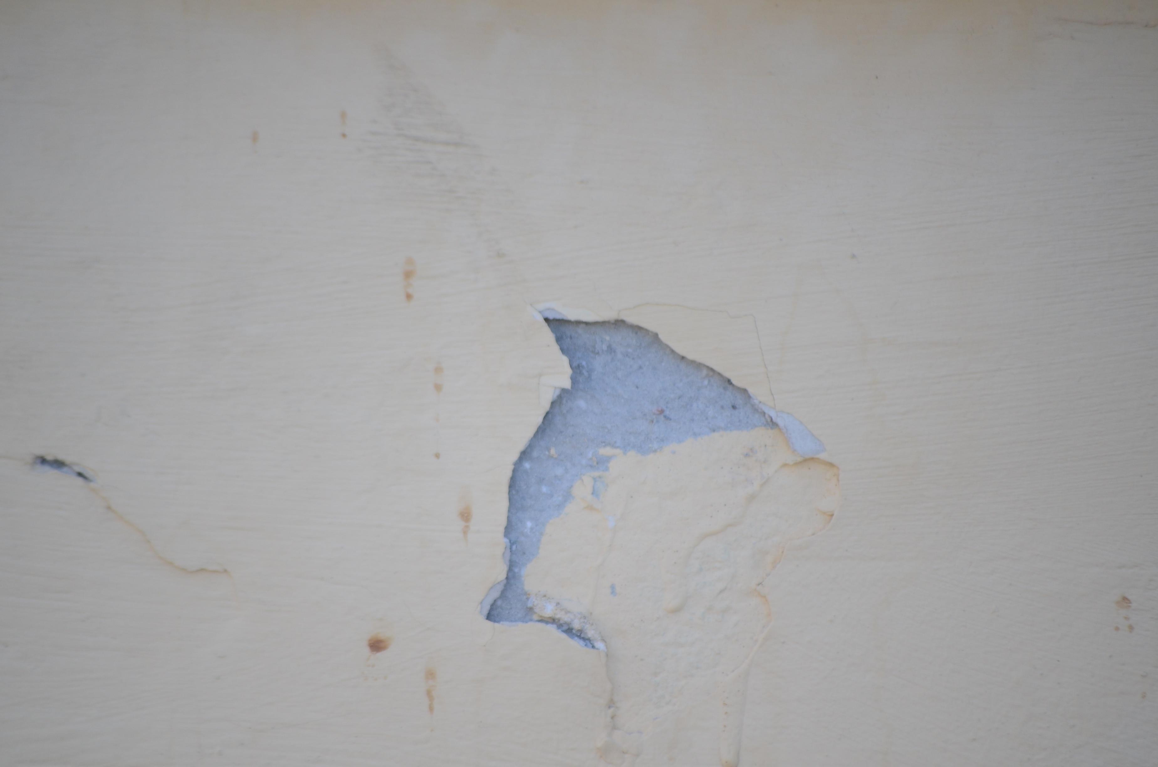 Fotoğraf El Beyaz Duvar Mavi Malzeme Boyama Sanat Eskiz