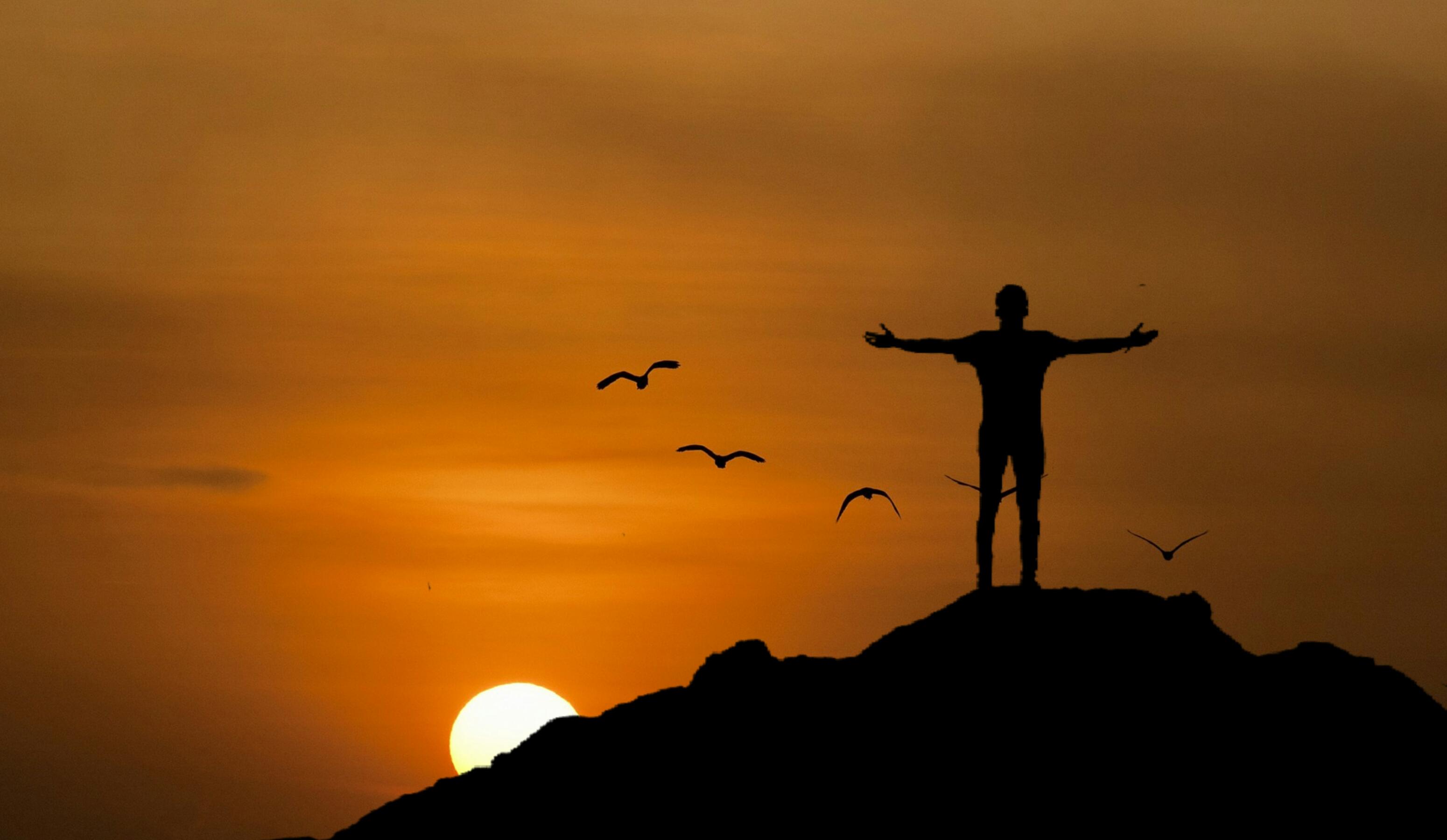 Free Images : hiking, sunset, sun, birds, twilight, flying ...