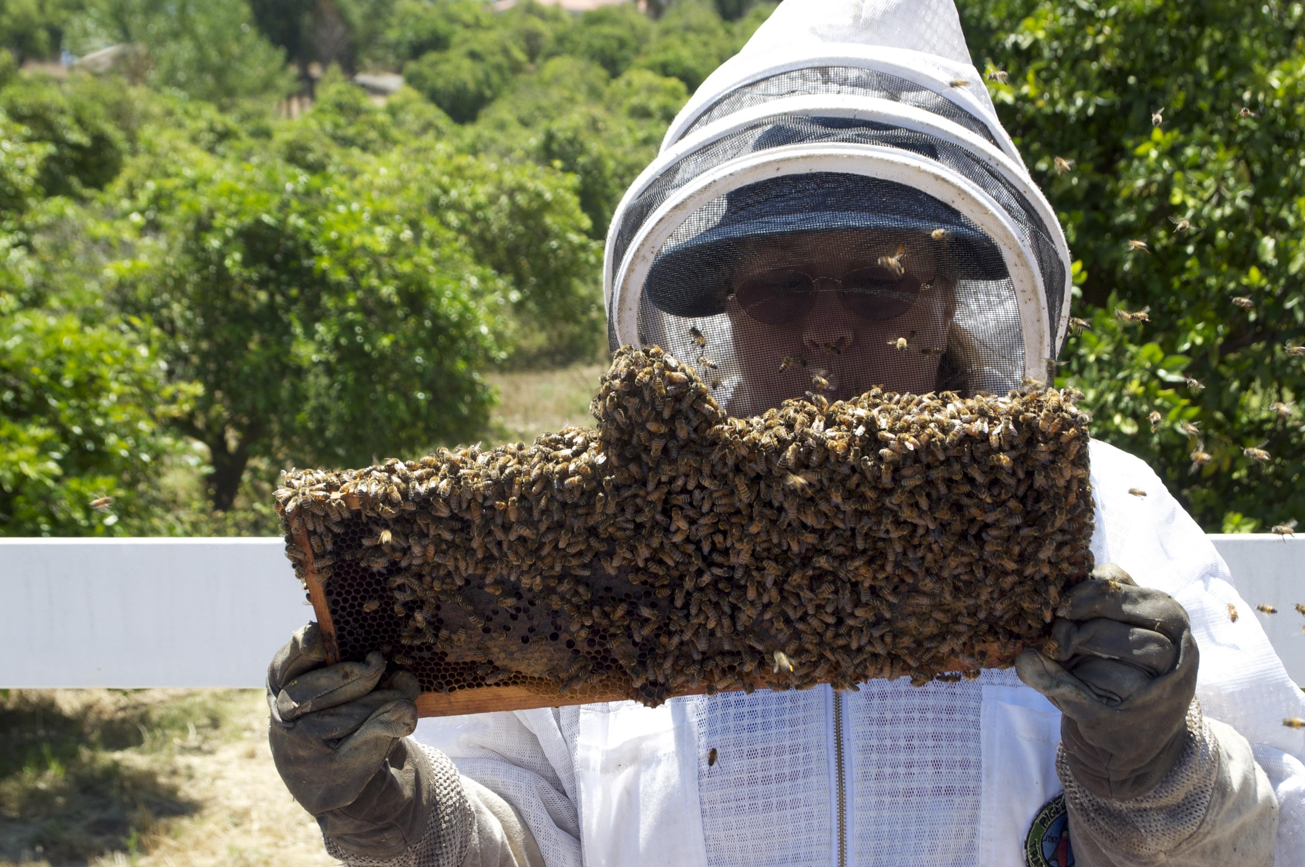 honung bra för huden