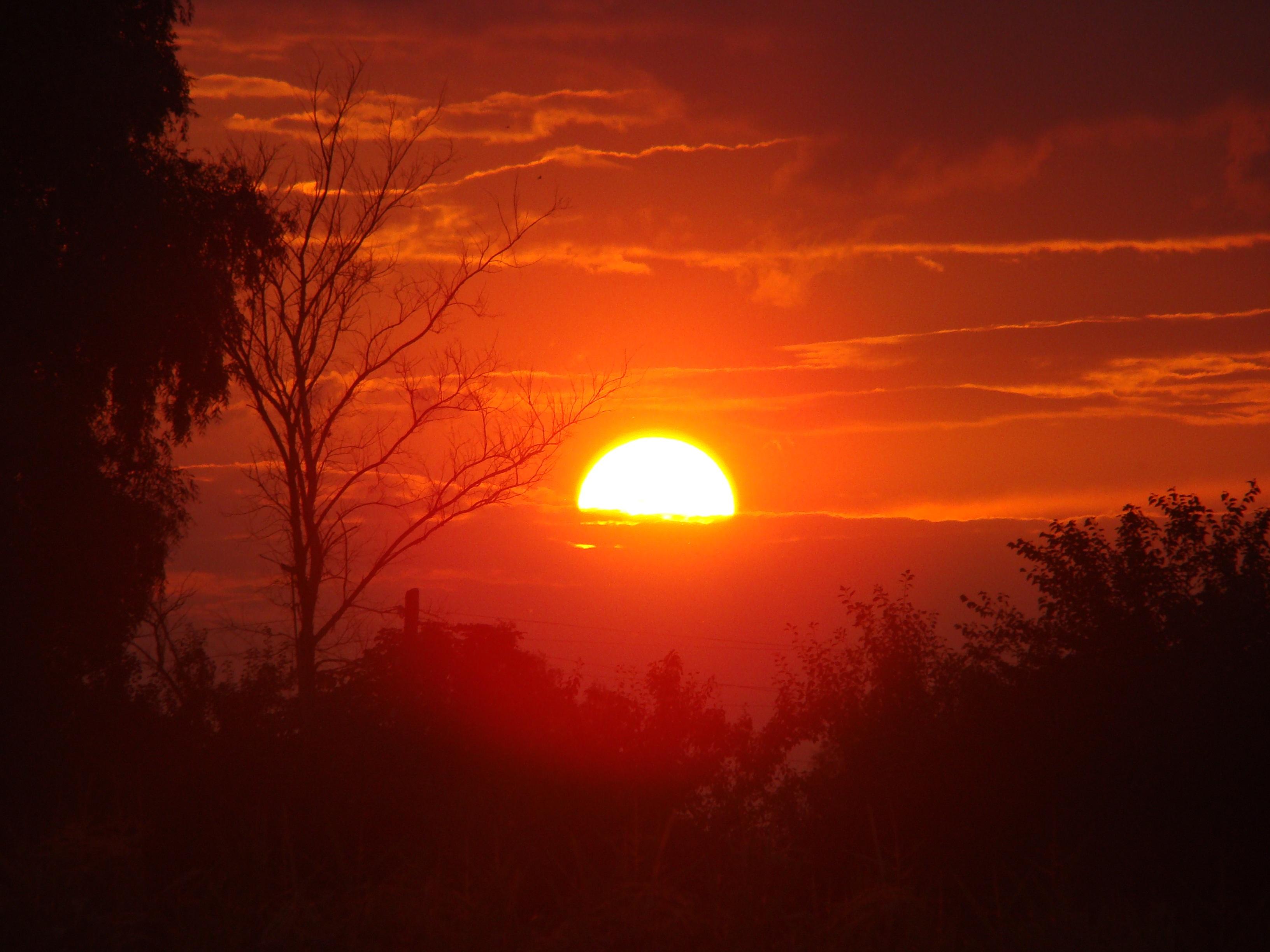 Восход солнца картинки про солнце