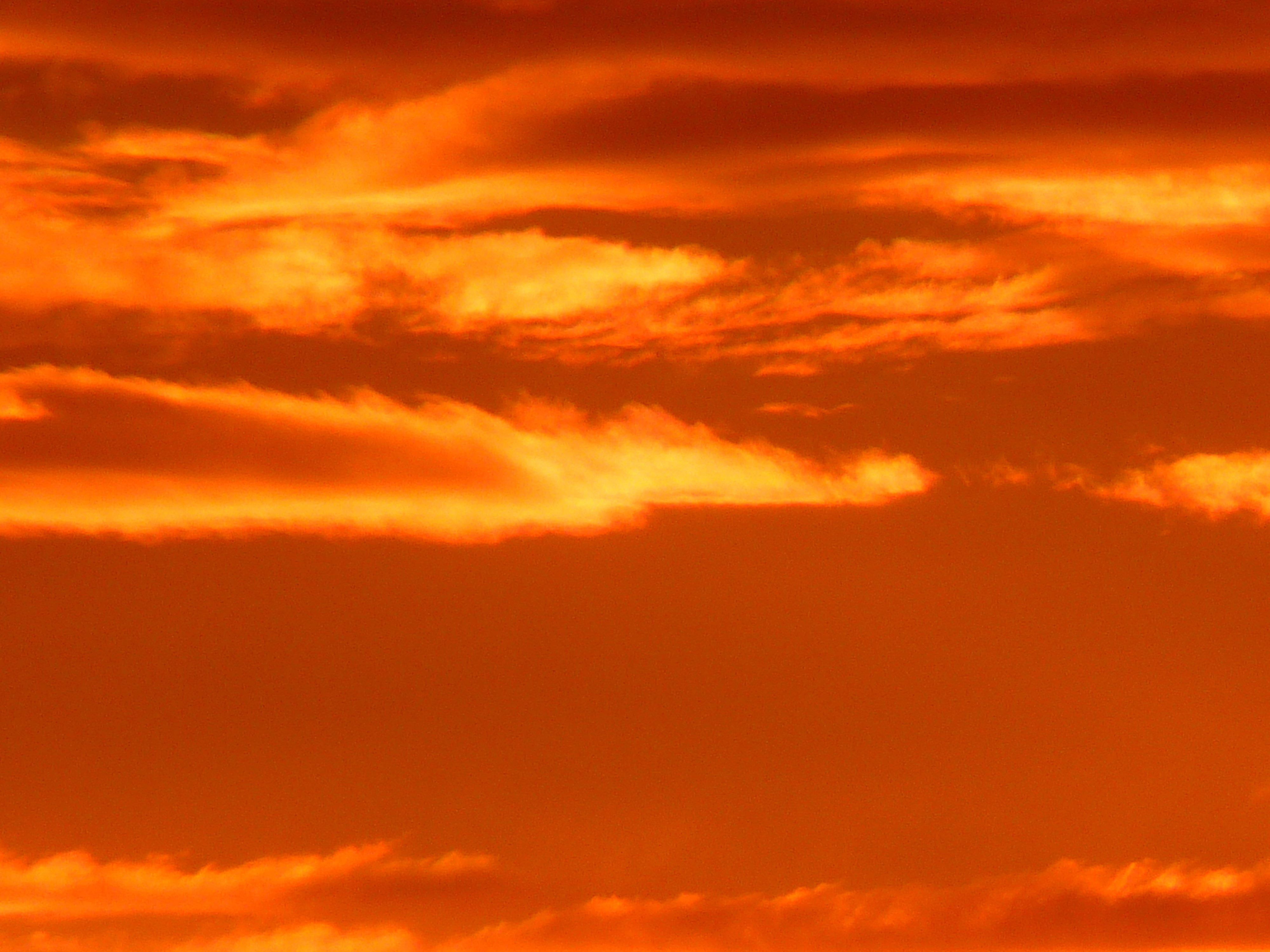 Fotos gratis : horizonte, nube, cielo, amanecer, puesta de ...