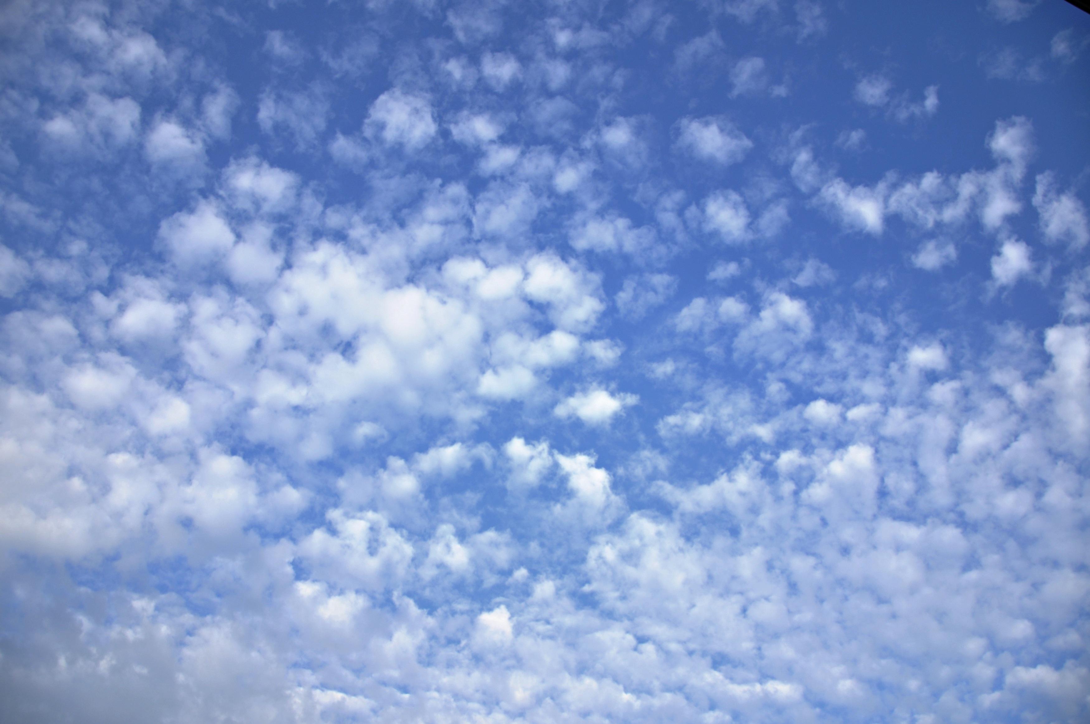 free images horizon cloud sunlight daytime cumulus clouds sky