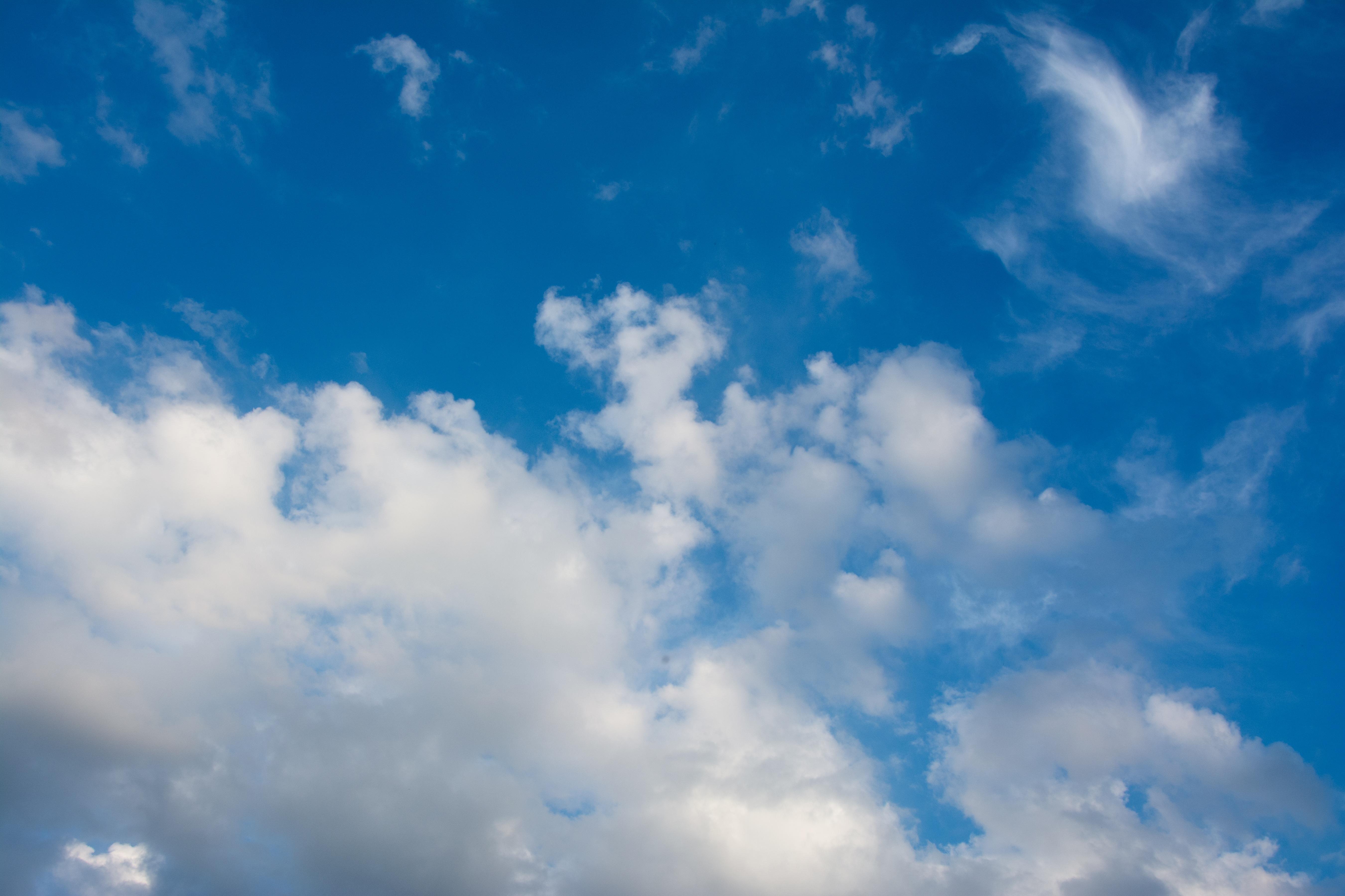 как посмотреть в облаке фотографии