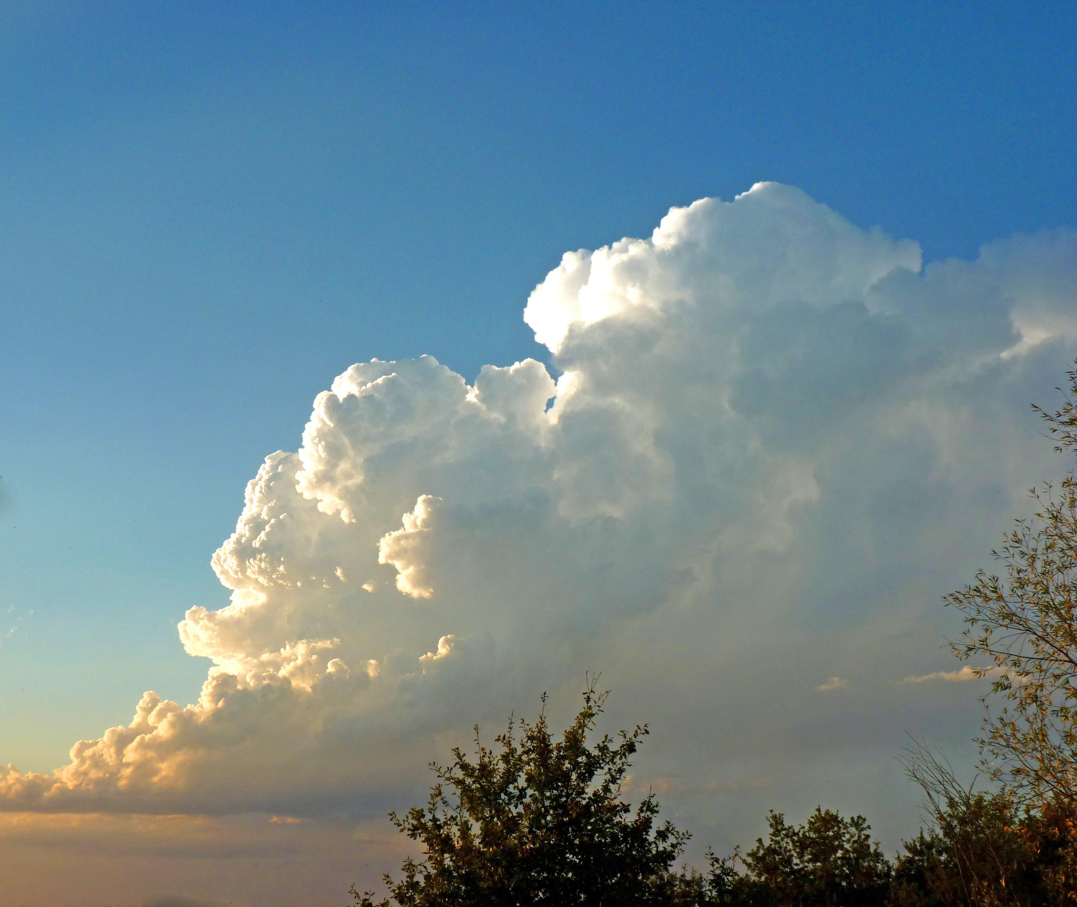доставкой картинки про облако атласных лент