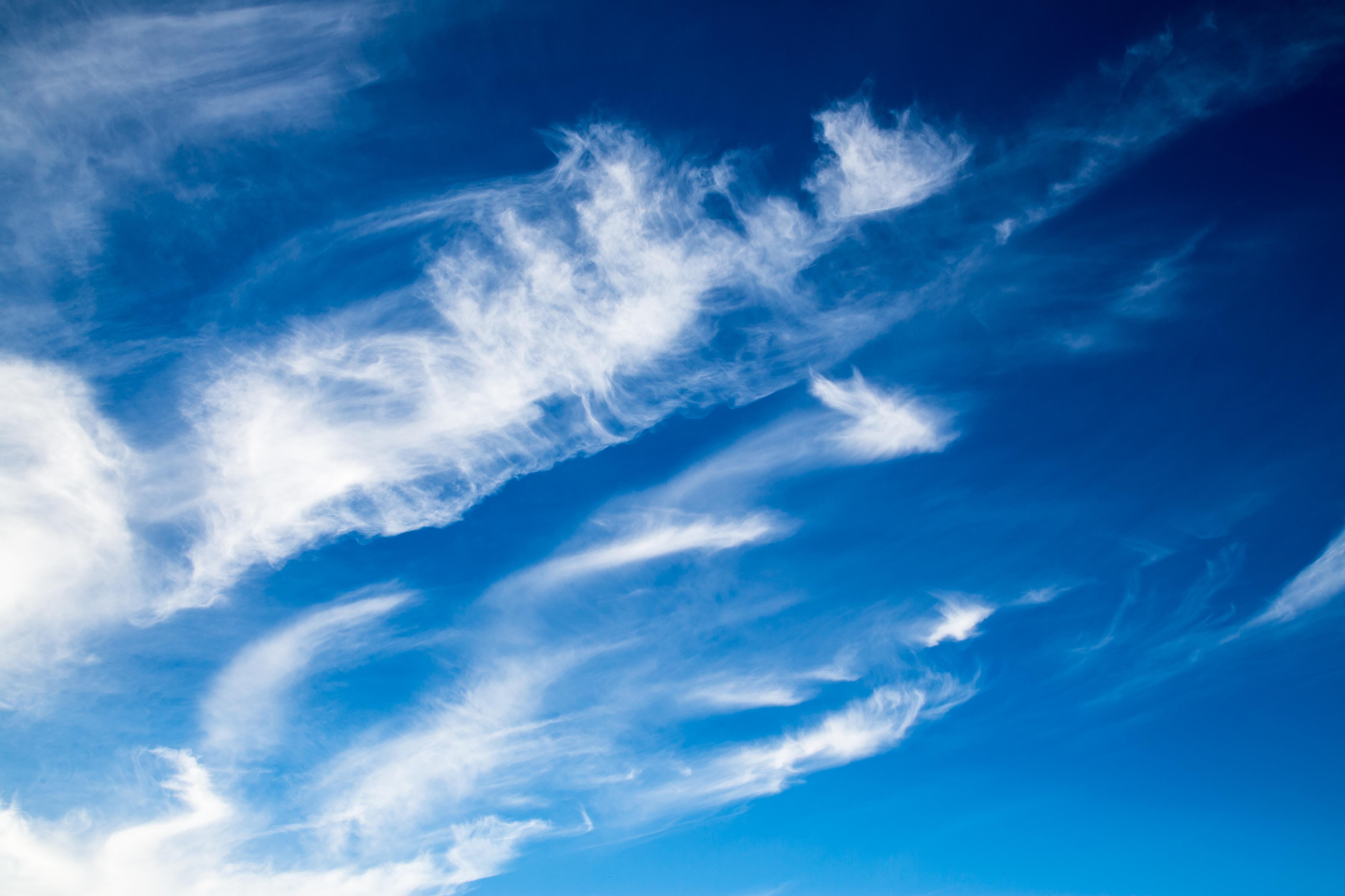 Free Images : horizon, cloud, sky, white, sunlight ...