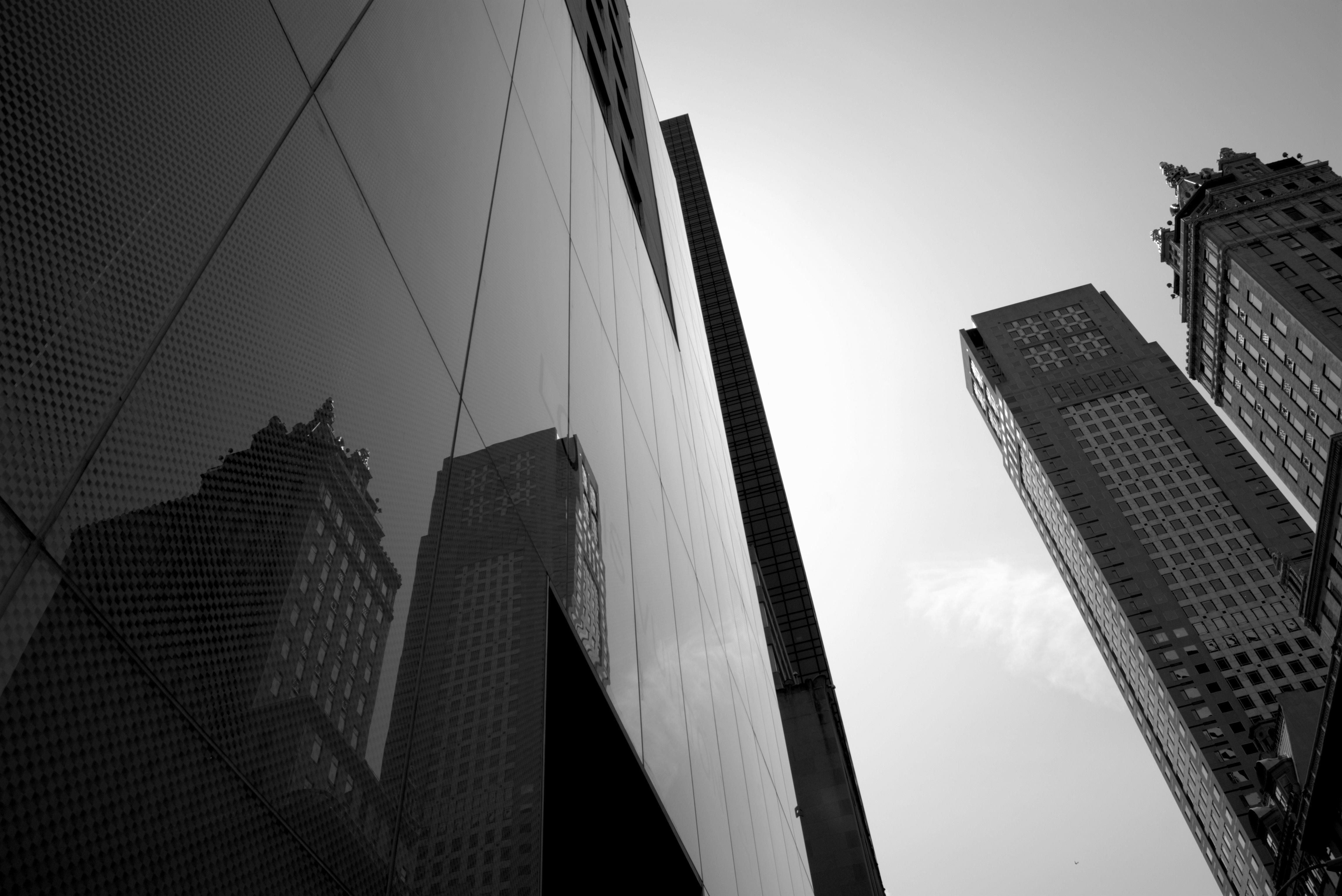 личное фото многоэтажек черно белые это