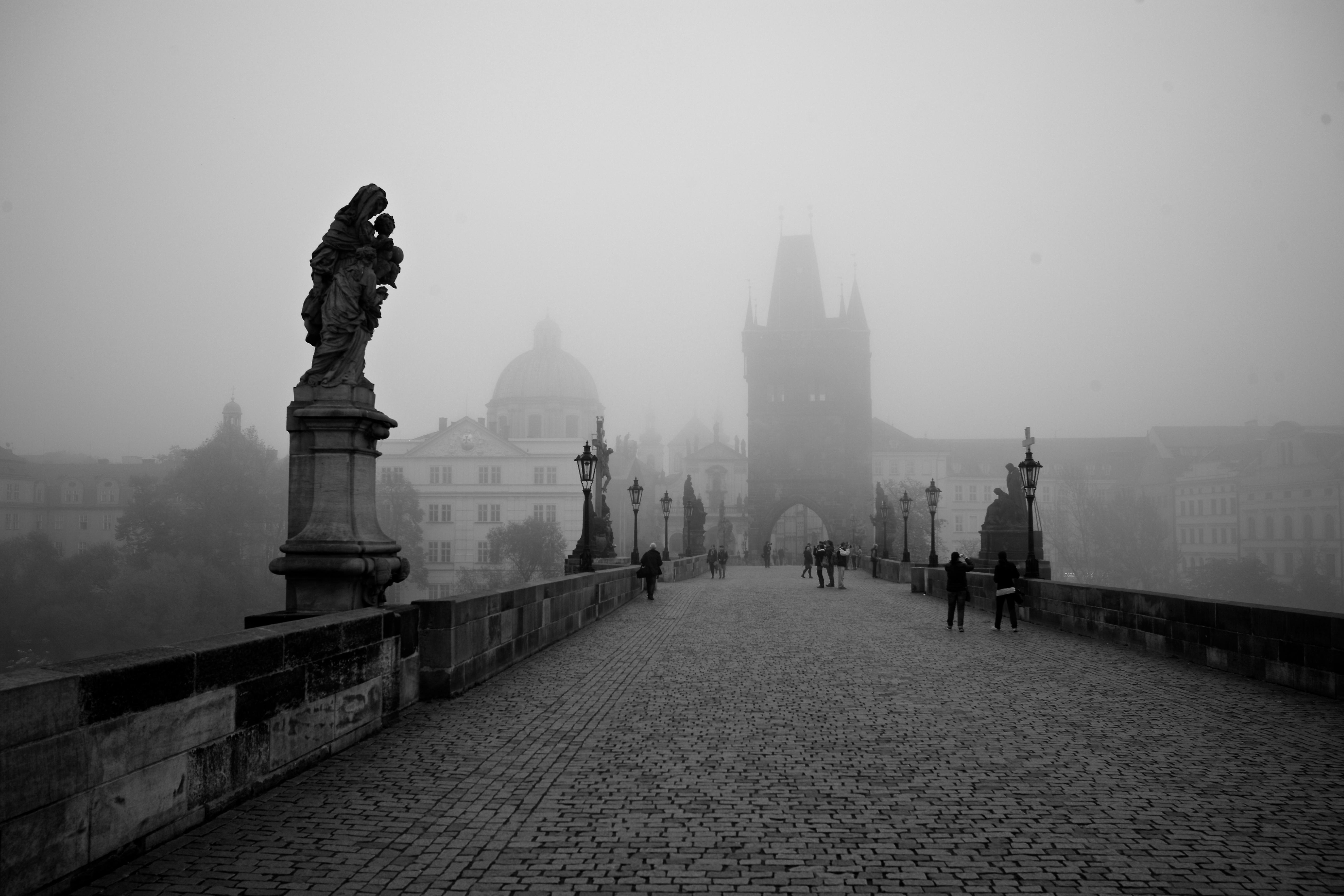 Free Images : horizon, silhouette, winter, light, black ...