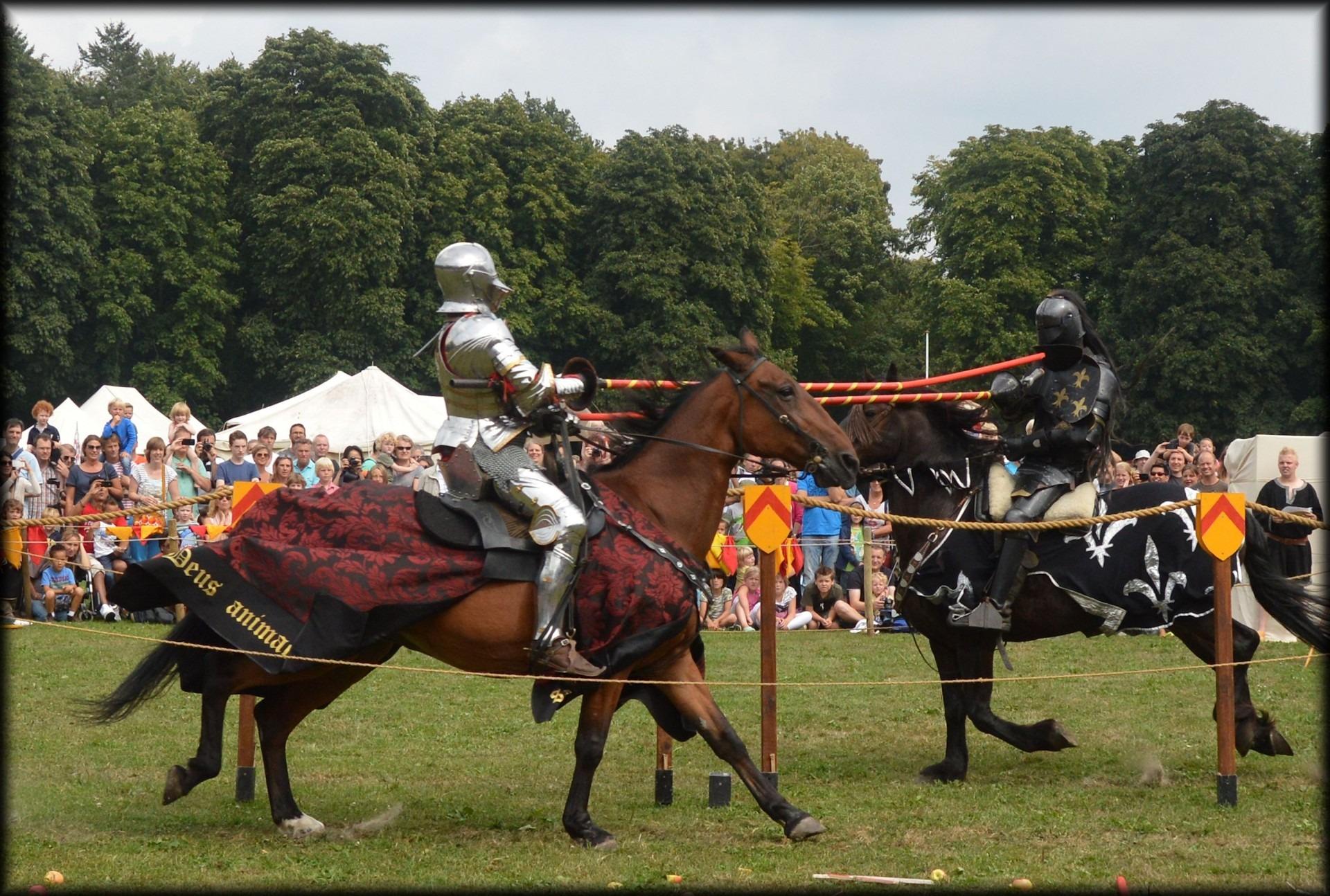 Préférence Images Gratuites : bats toi, les chevaux, médiéval, Hollande  QX17