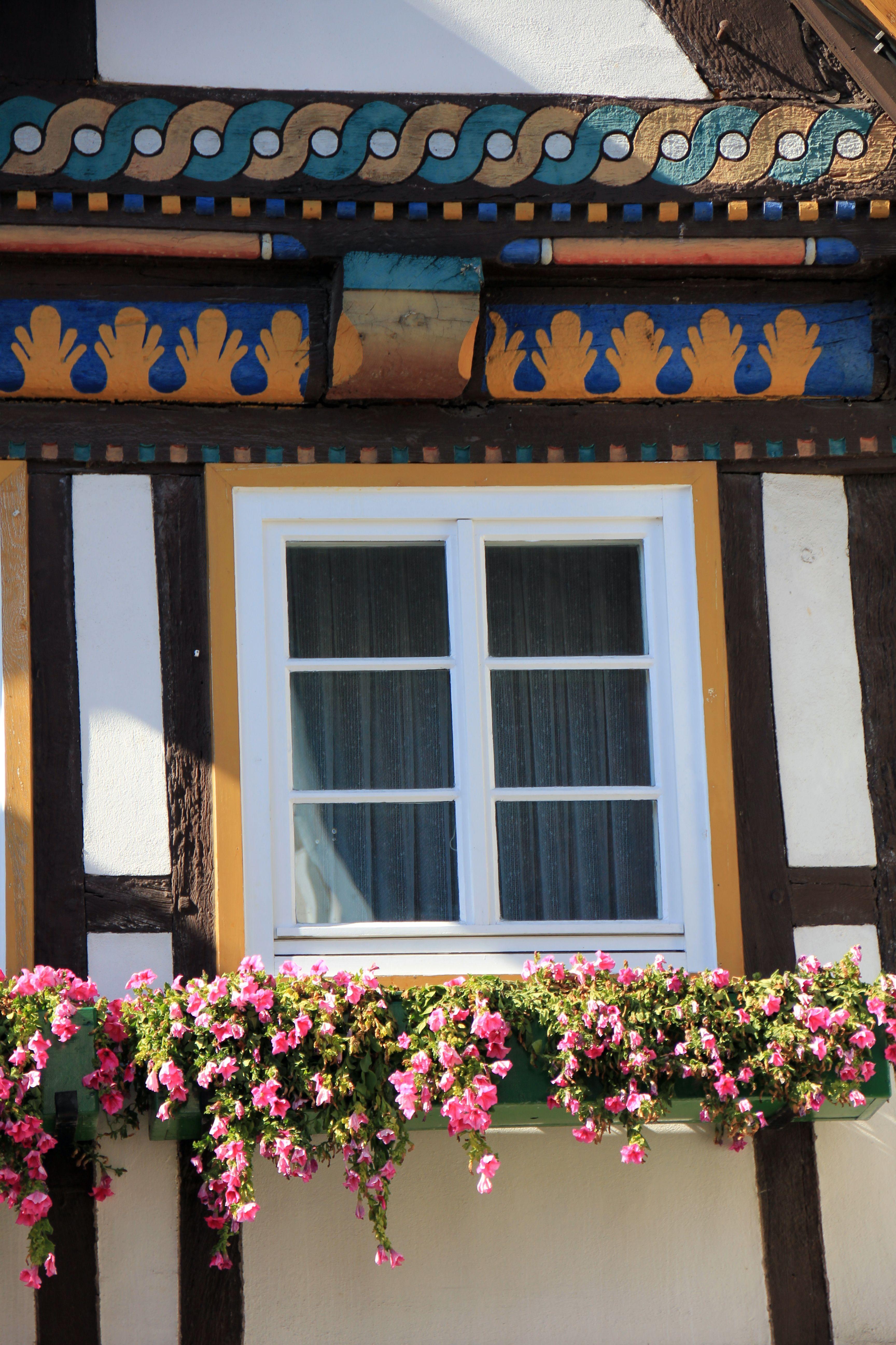 Maison fleur fenêtre bâtiment maison été bar balcon couleur façade décor fleurs design dintérieur