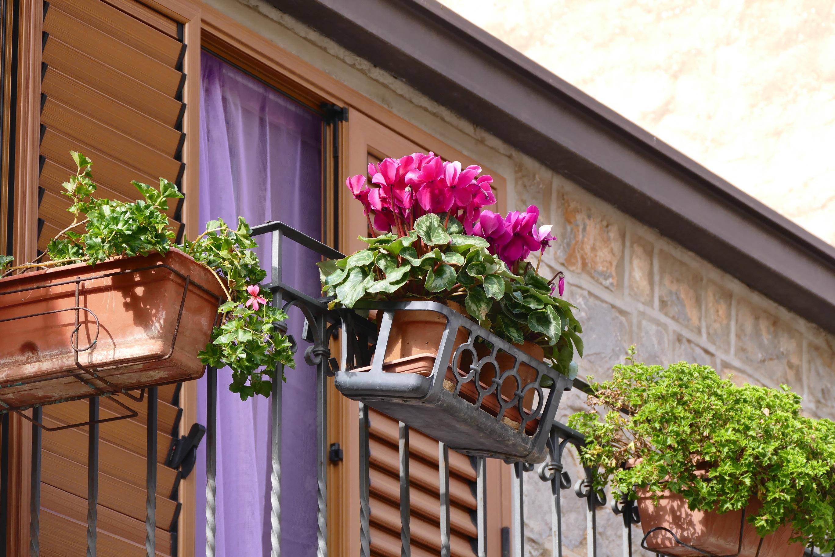 Gambar Rumah Jendela Beranda Pondok Halaman Belakang Italia