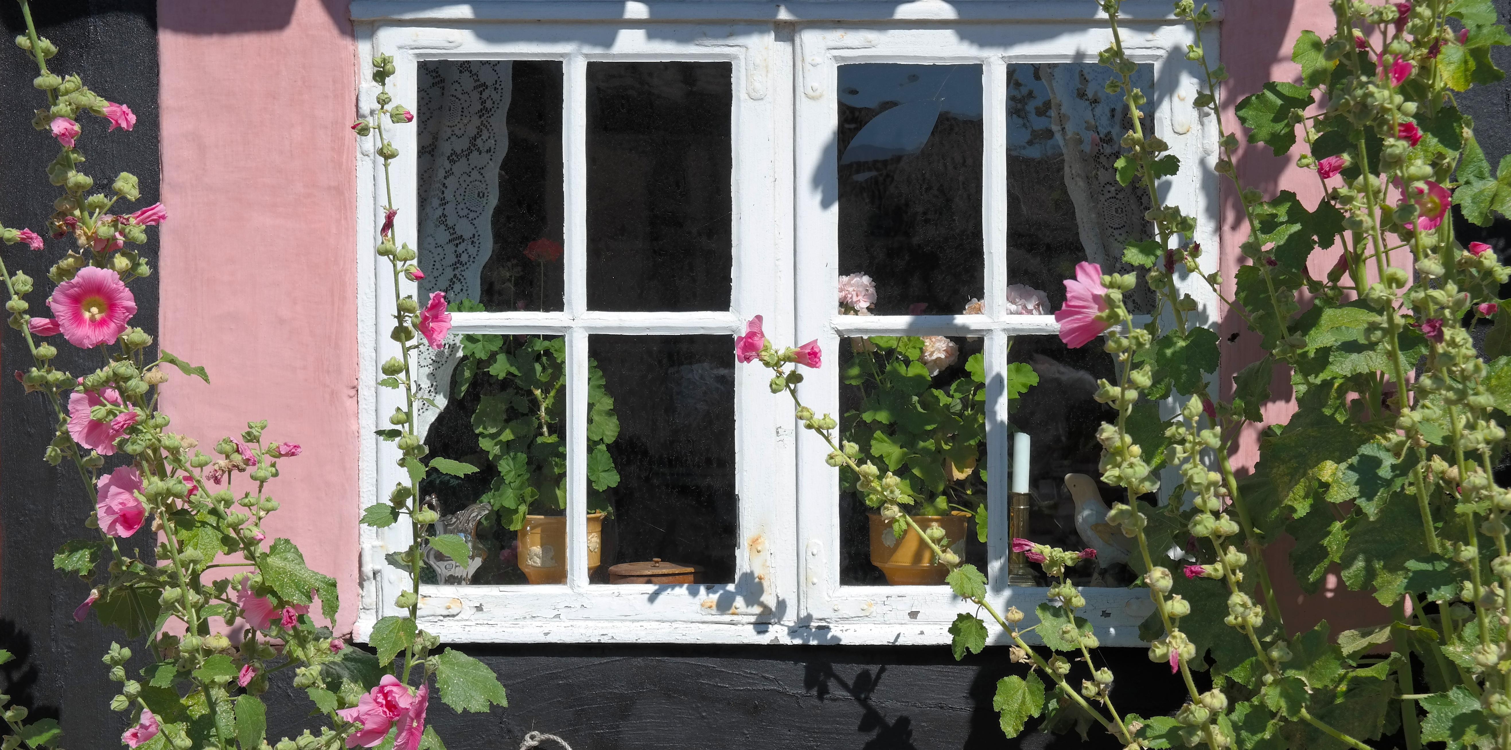 Images gratuites maison fleur fen tre vieux porche - Porche chalet ...