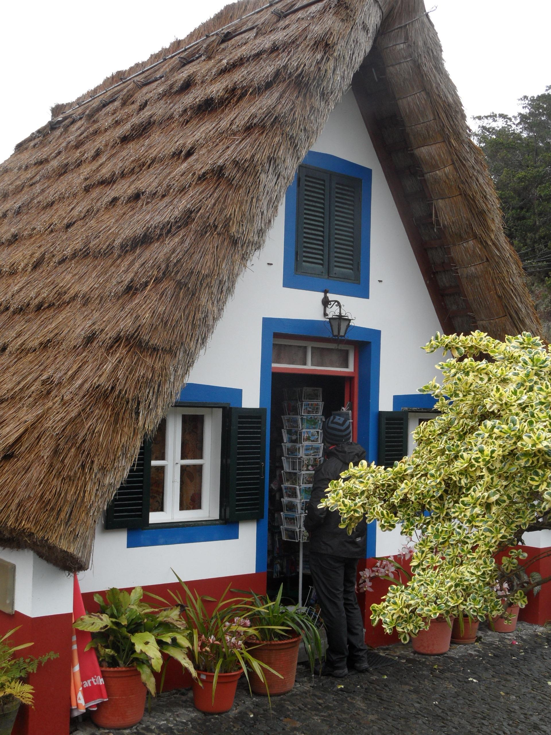 большинство дома с соломенными крышами фото алукард