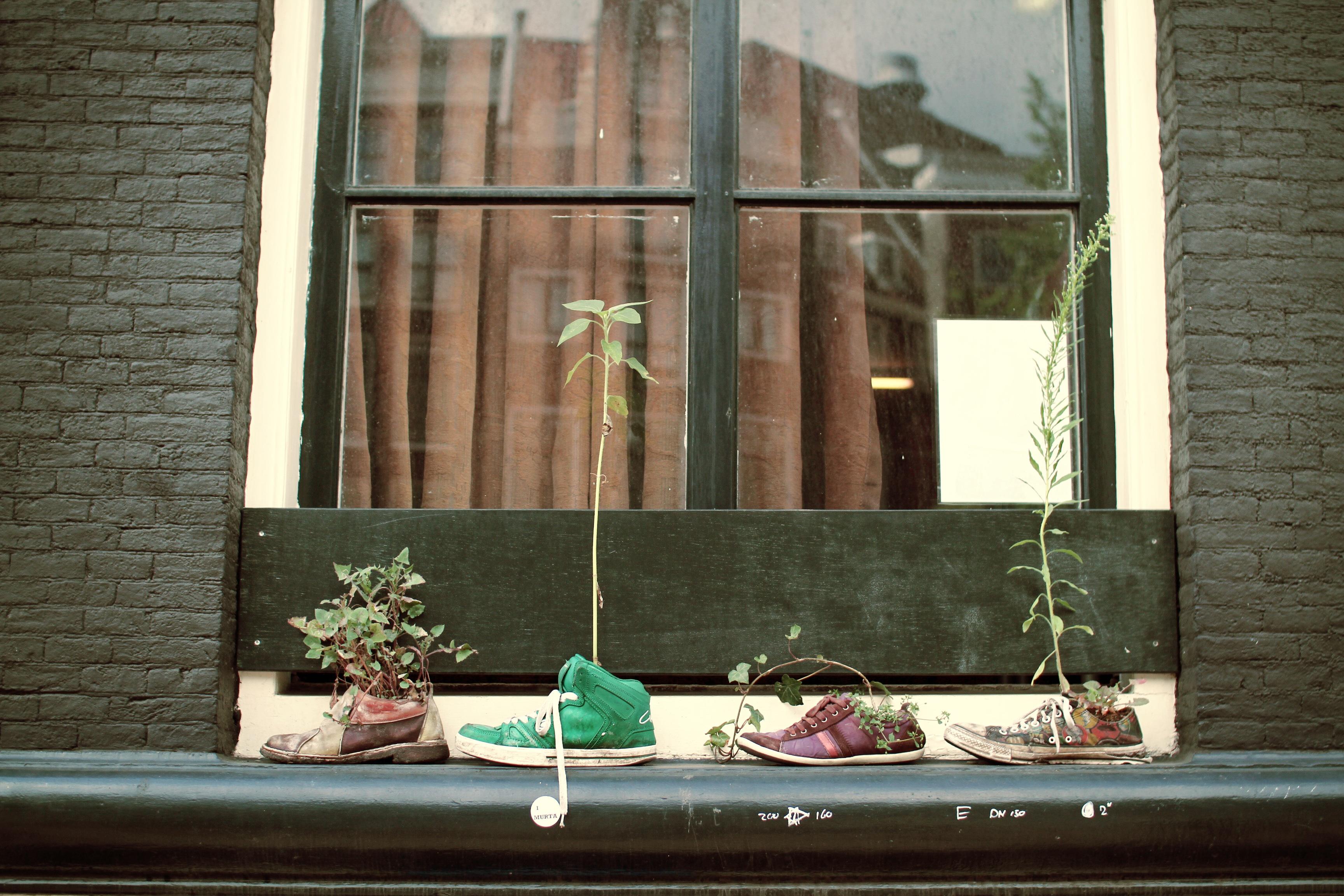 Kostenlose foto : Haus, Fenster, Zuhause, Mauer, Wohnzimmer, Zimmer ...