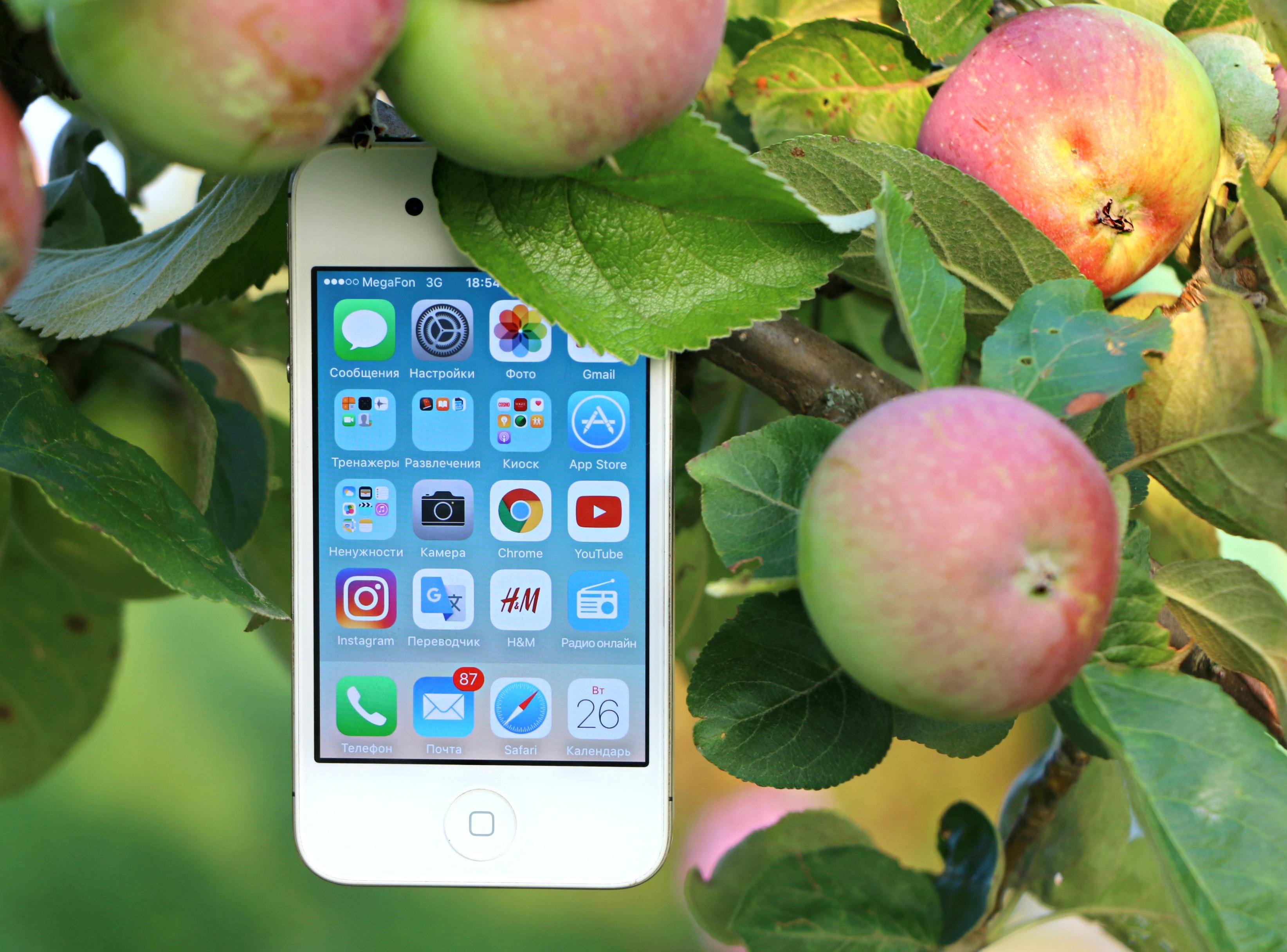 картинки телефона яблока олег