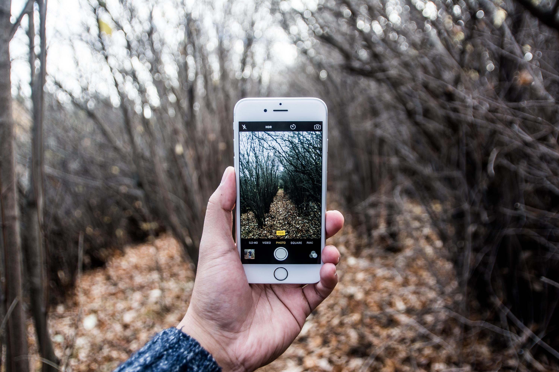 профессионально фотографируем на смартфон можете пройти