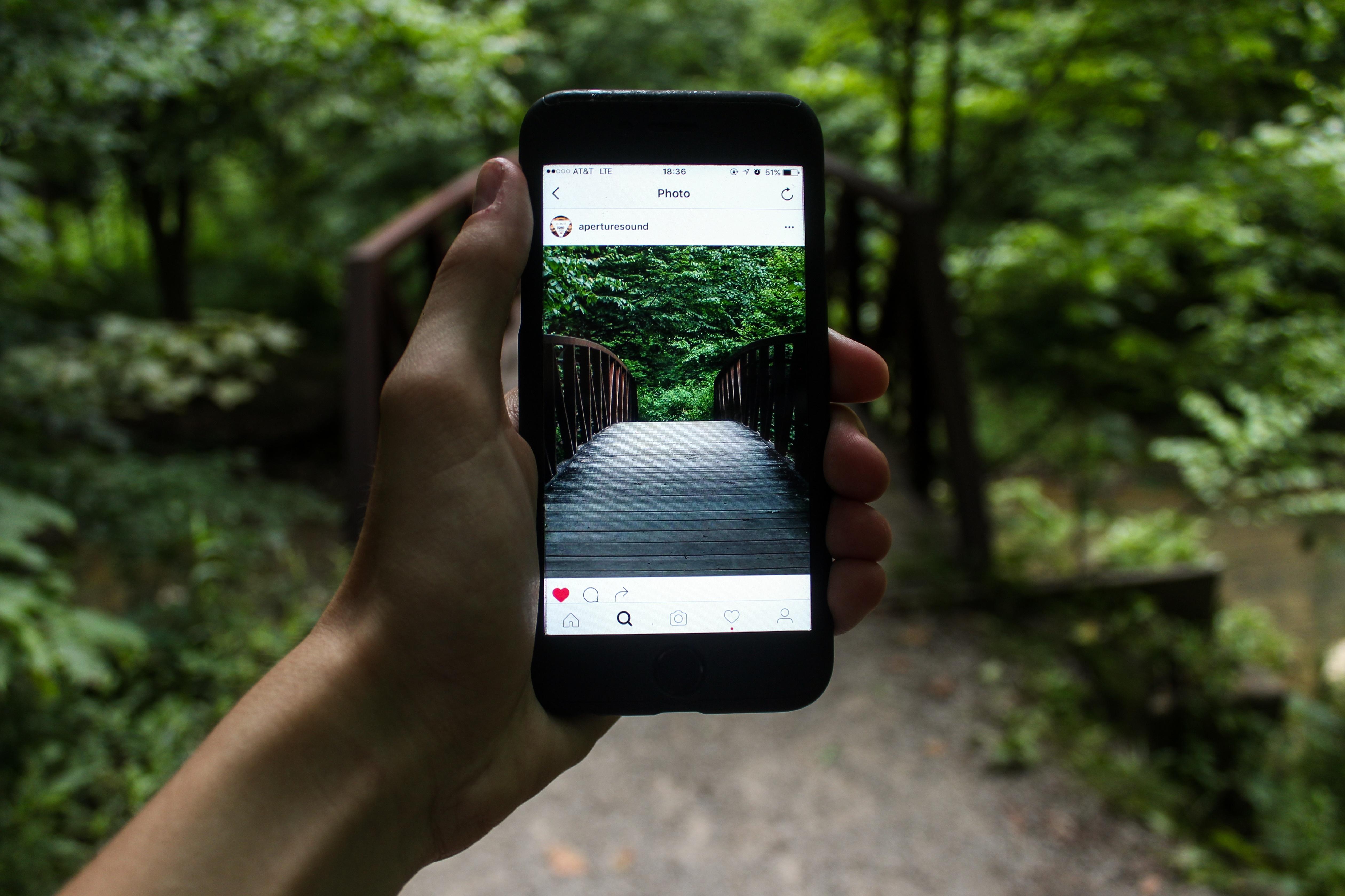 улей быстрое фото на айфон мяча наборе