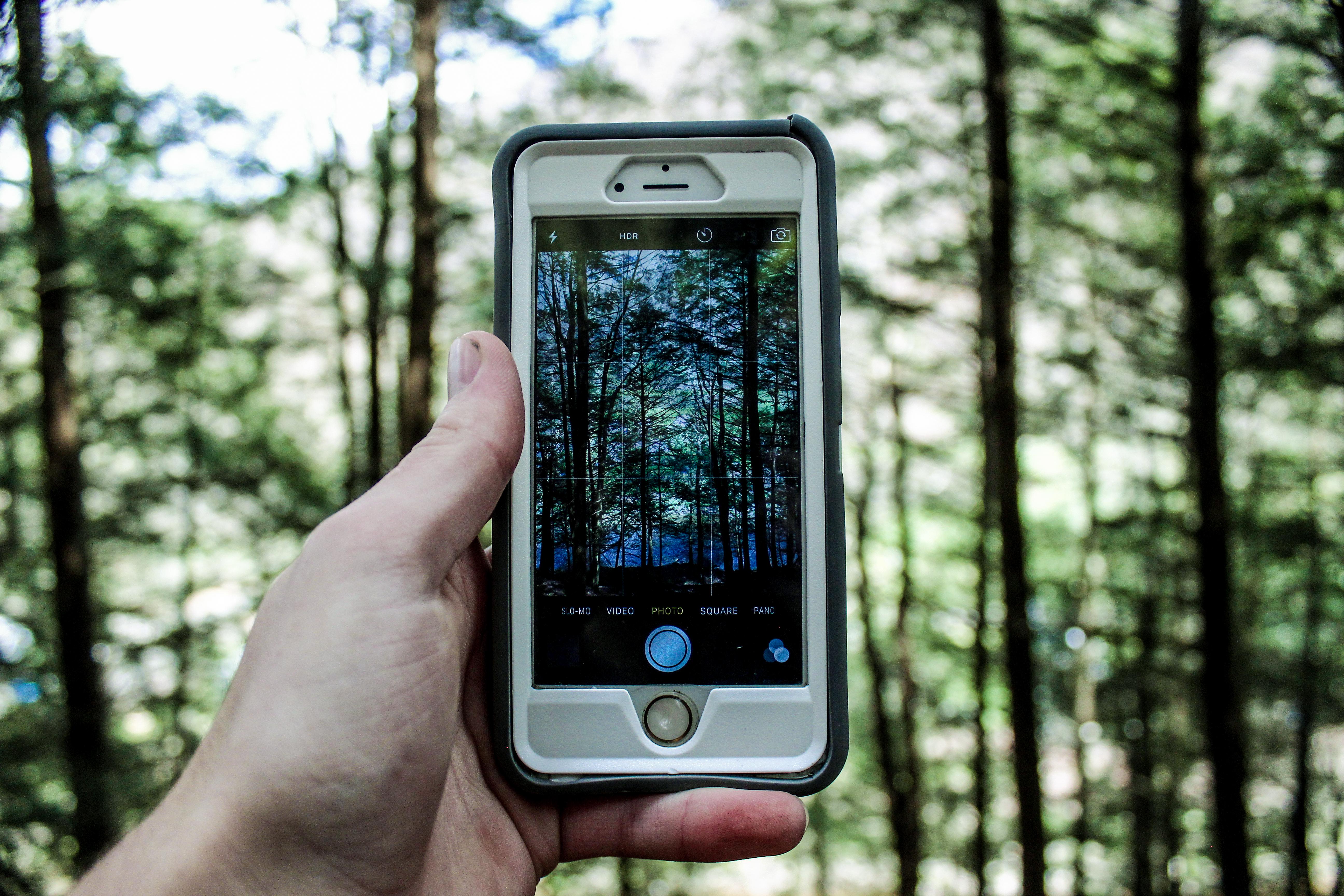 Найдите мобильный телефон на картинке