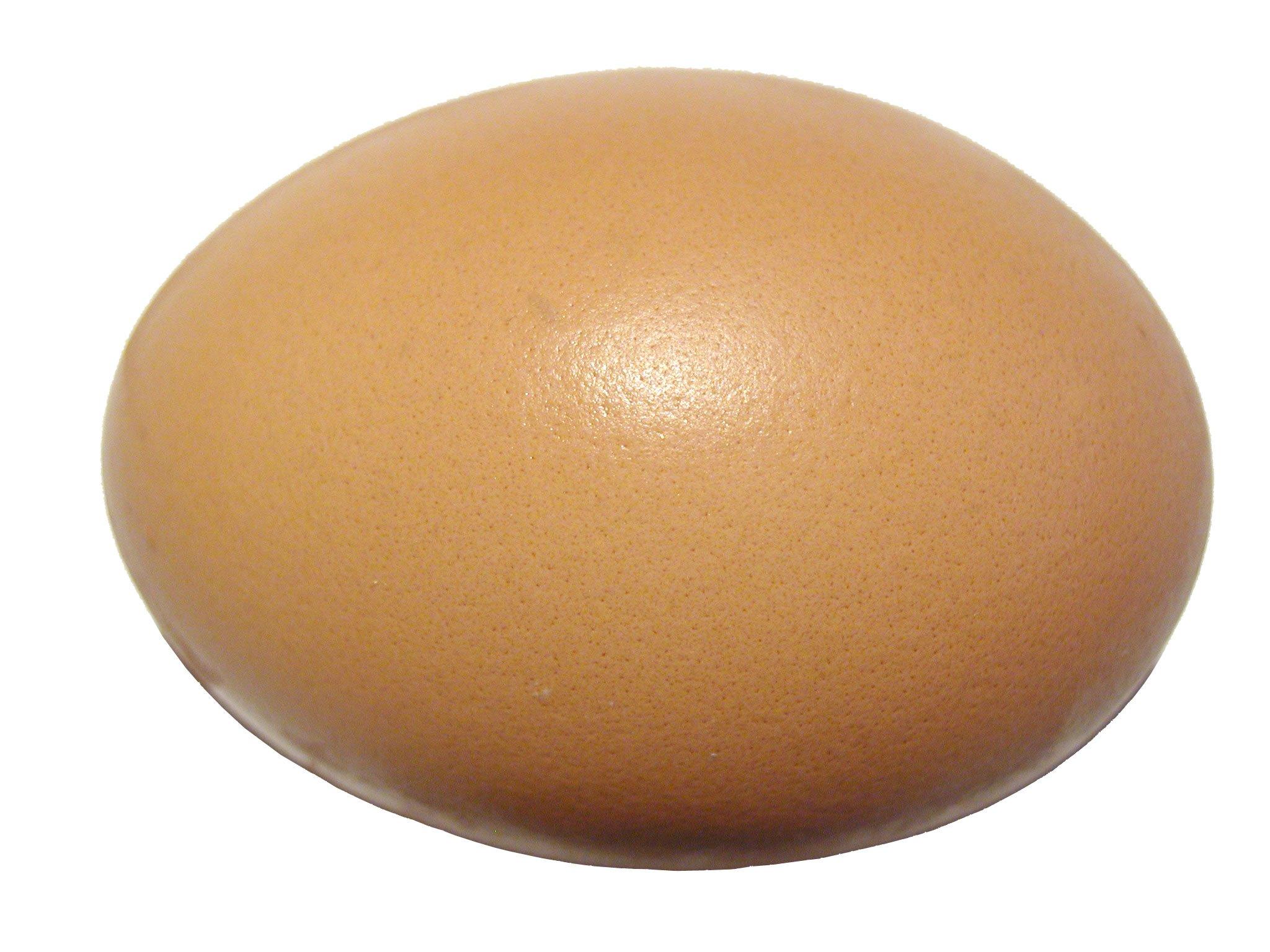 Fotos gratis aislado comida ingrediente cocinar for Cocinar yemas de huevo