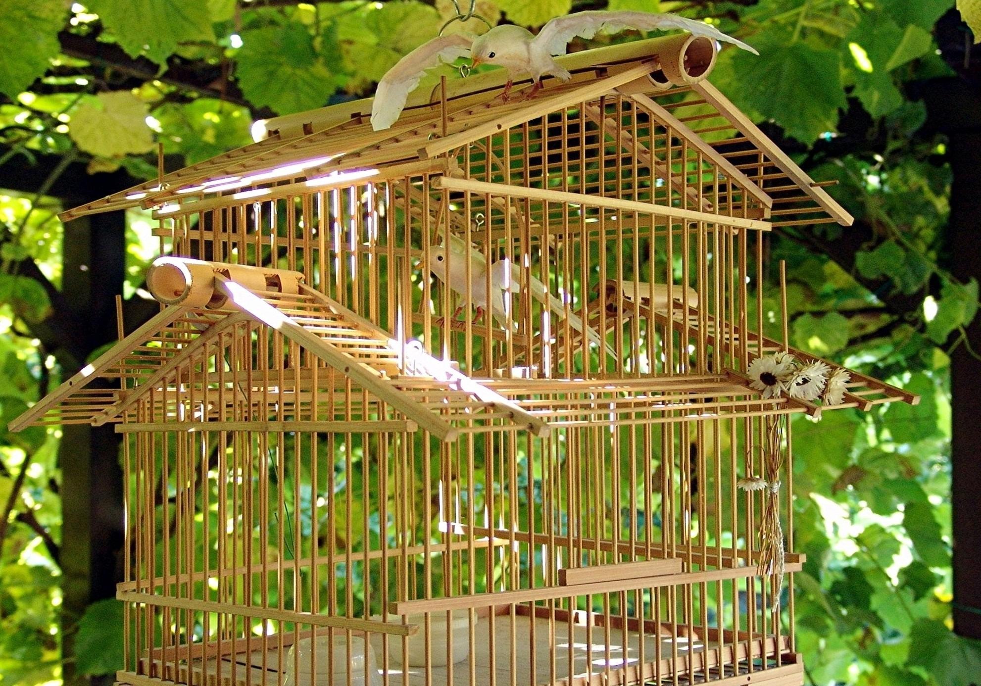 Как сделать клетку попугая из дерева