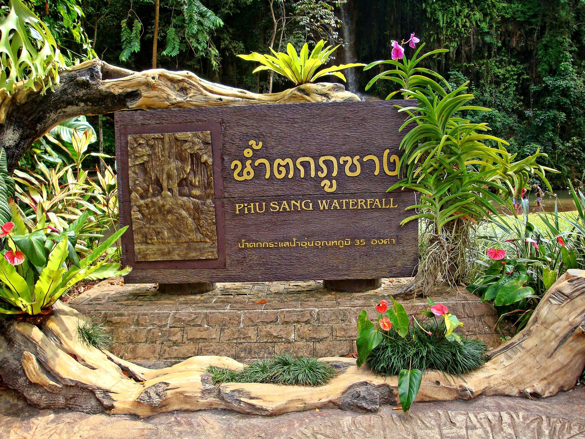 Free Images : jungle, backyard, botany, garden, thailand, yard ...