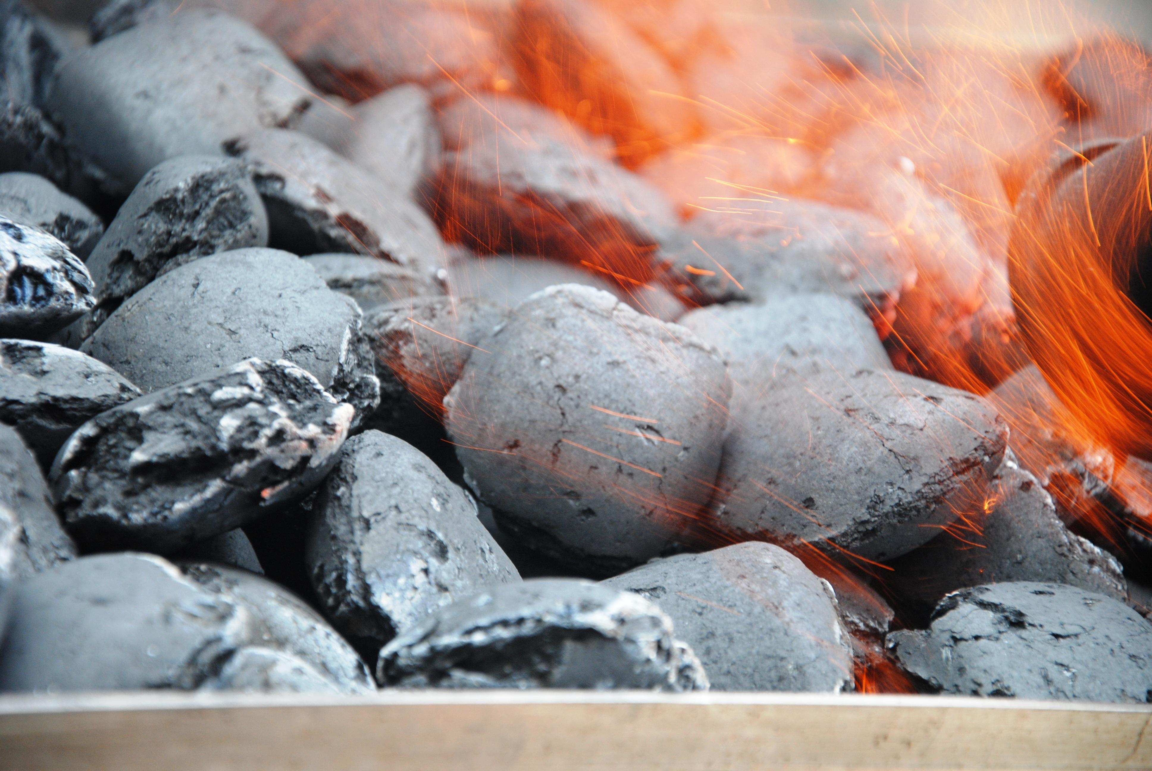 images gratuites : allumer, aliments, fruit de mer, flamme, feu
