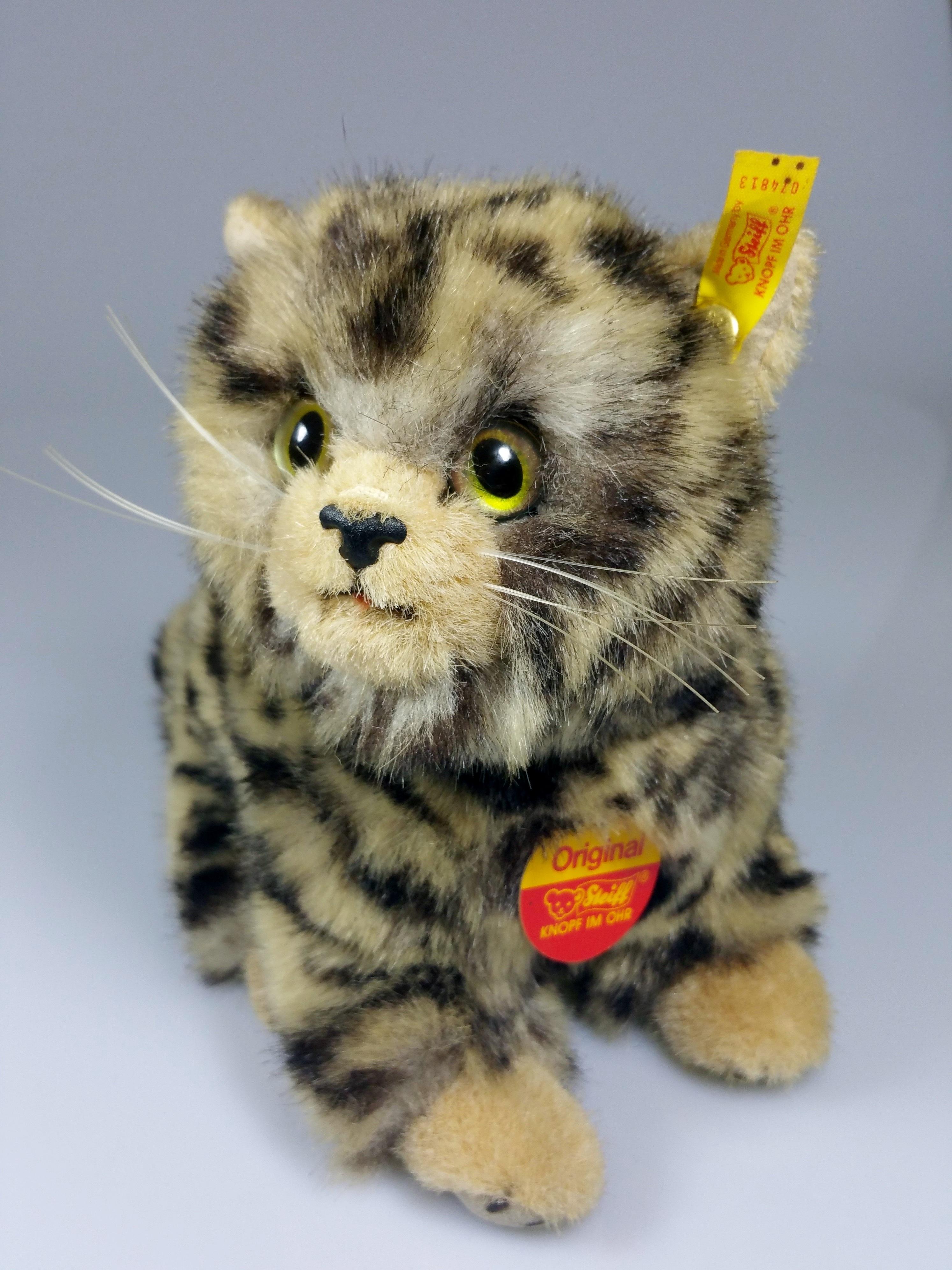 hình ảnh : Mèo con, con mèo, Động vật có vú, gấu bông, Râu, Động vật có xương sống, nguyên, thú nhồi bông, Đồ chơi nhồi bông, Mèo nhỏ đến vừa, Mèo ...