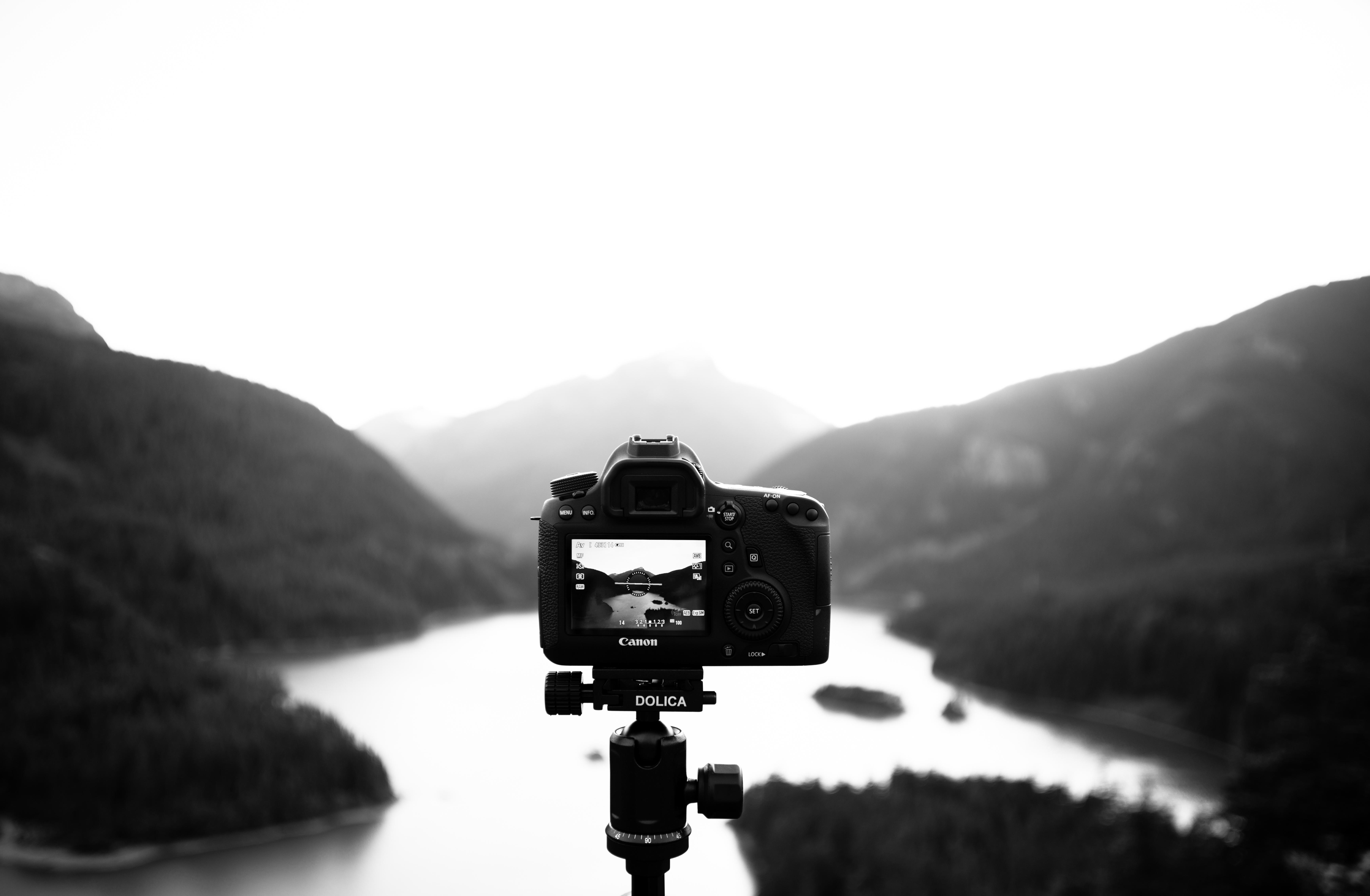 Цифровая черно белая фотография