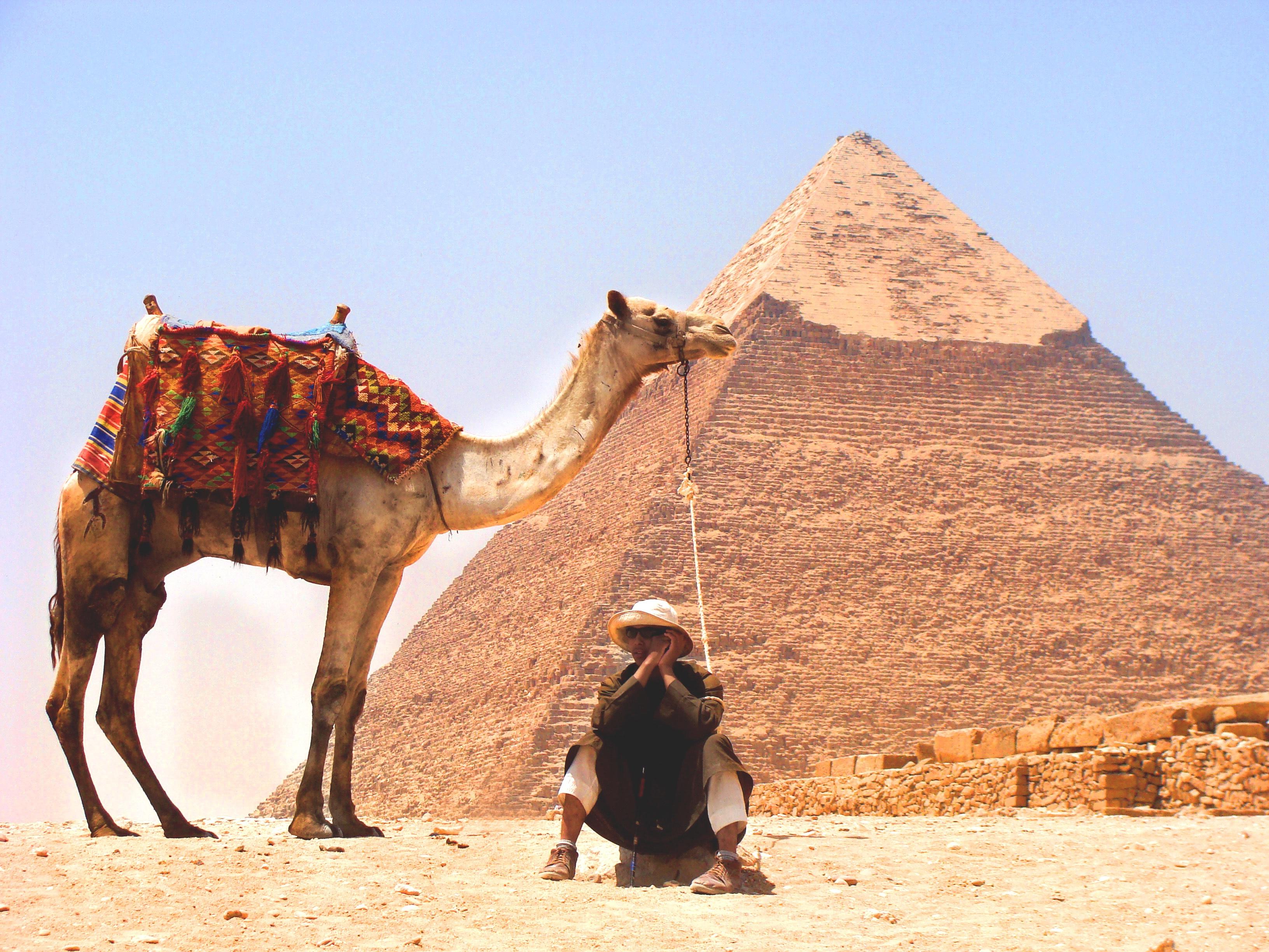 Поздравление, картинки с пустыней и верблюдами и пирамидами
