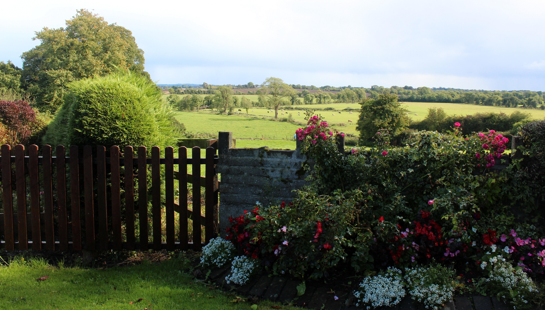 Landscape Farm Lawn Countryside Flower Scenic Scenery Agriculture Garden  Gate Farmland Shrub Ireland Estate