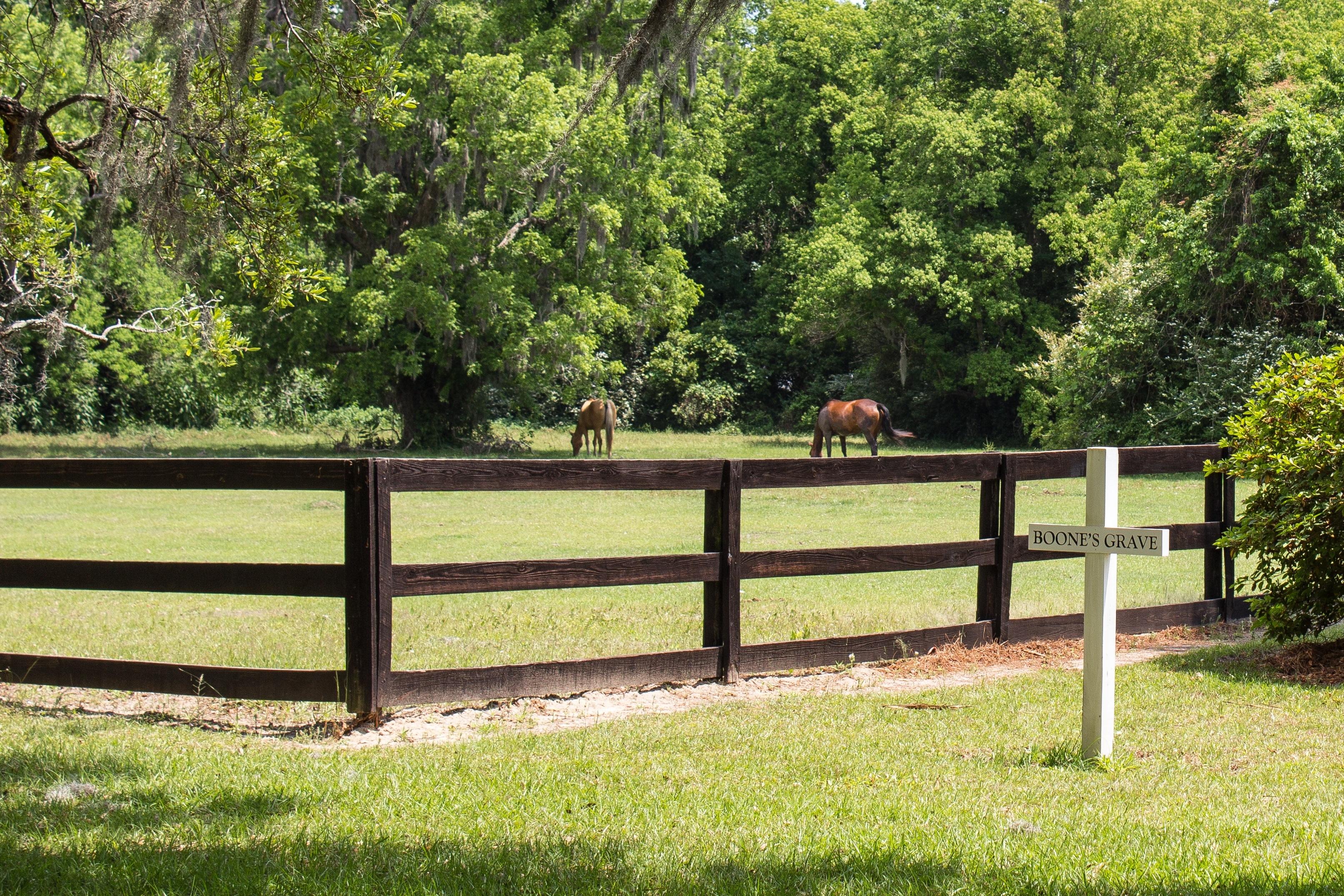 Free Images Landscape Grass Farm Lawn Old Pasture