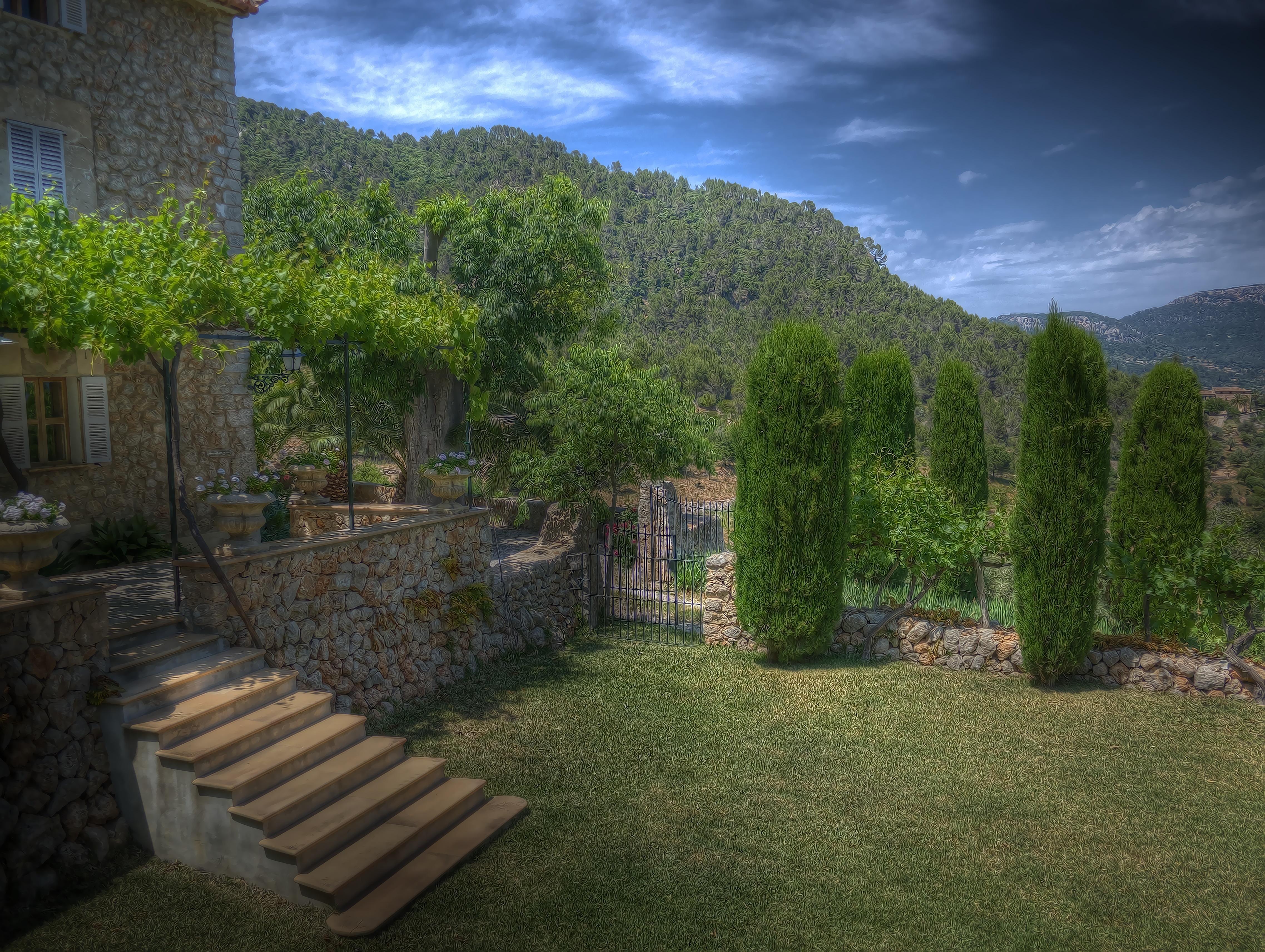 Landschaft Gras Rasen Blume Palme Hinterhof Eigentum Garten Mallorca  Immobilien Ökosystem Finca Esporles