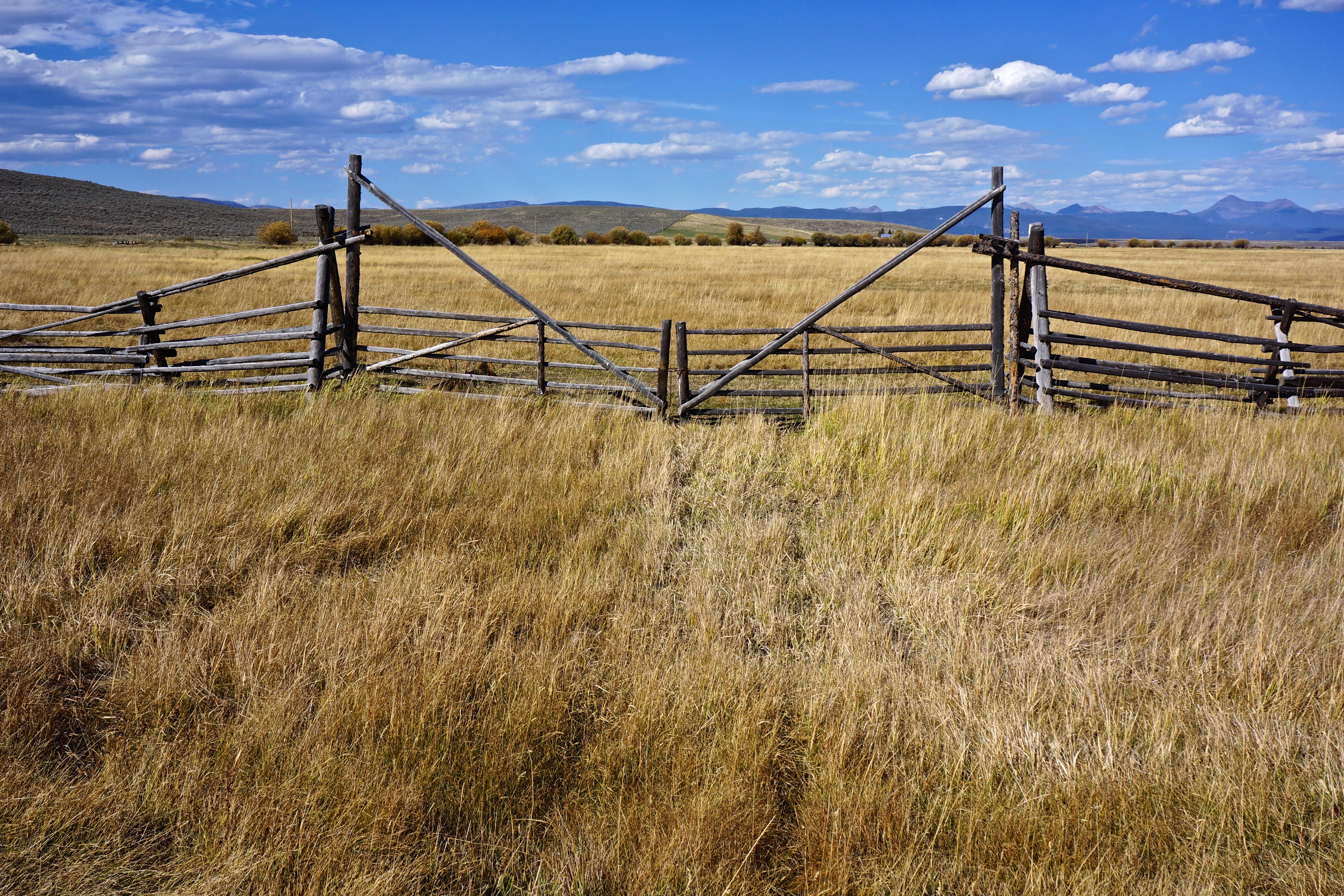 Kostenlose foto : Landschaft, Gras, Sumpf, Zaun, Spur, Feld ...