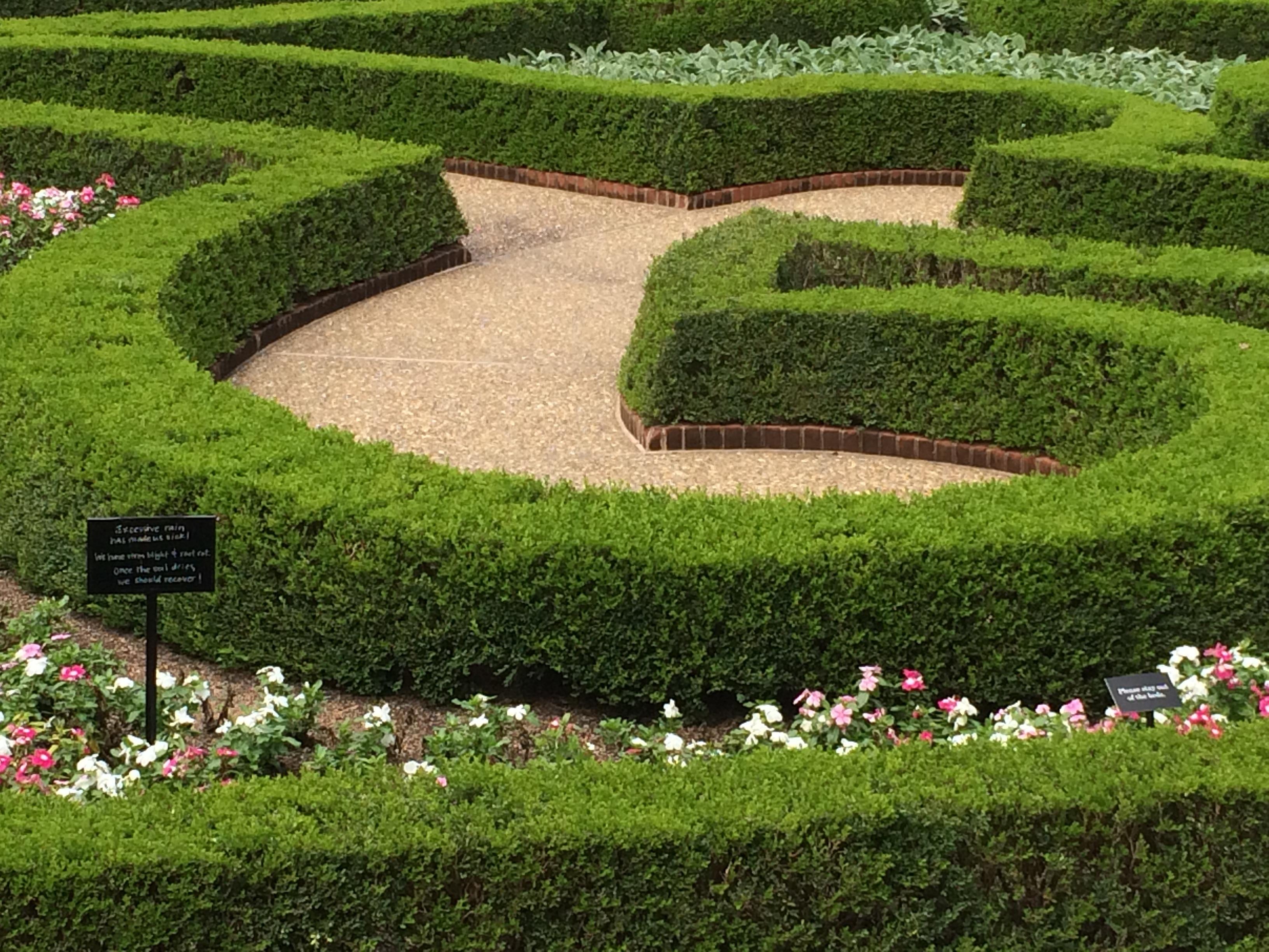 Landscape Grass Plant Field Lawn Meadow Flower Green Backyard Botany Garden  Flowers Landscaping Design Curves Shrub