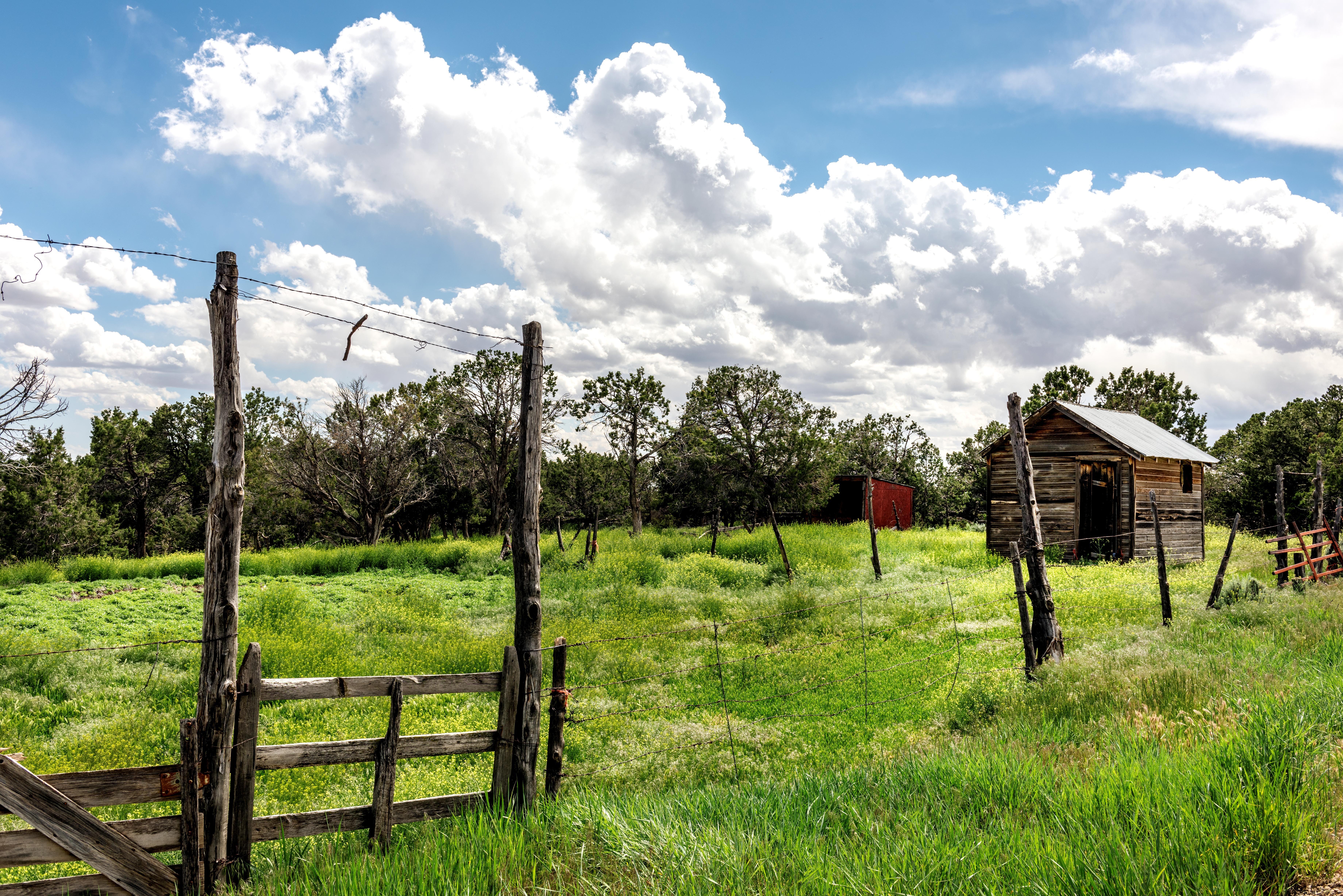 Kostenlose foto : Landschaft, Gras, Holz, Feld, Bauernhof, Wiese ...