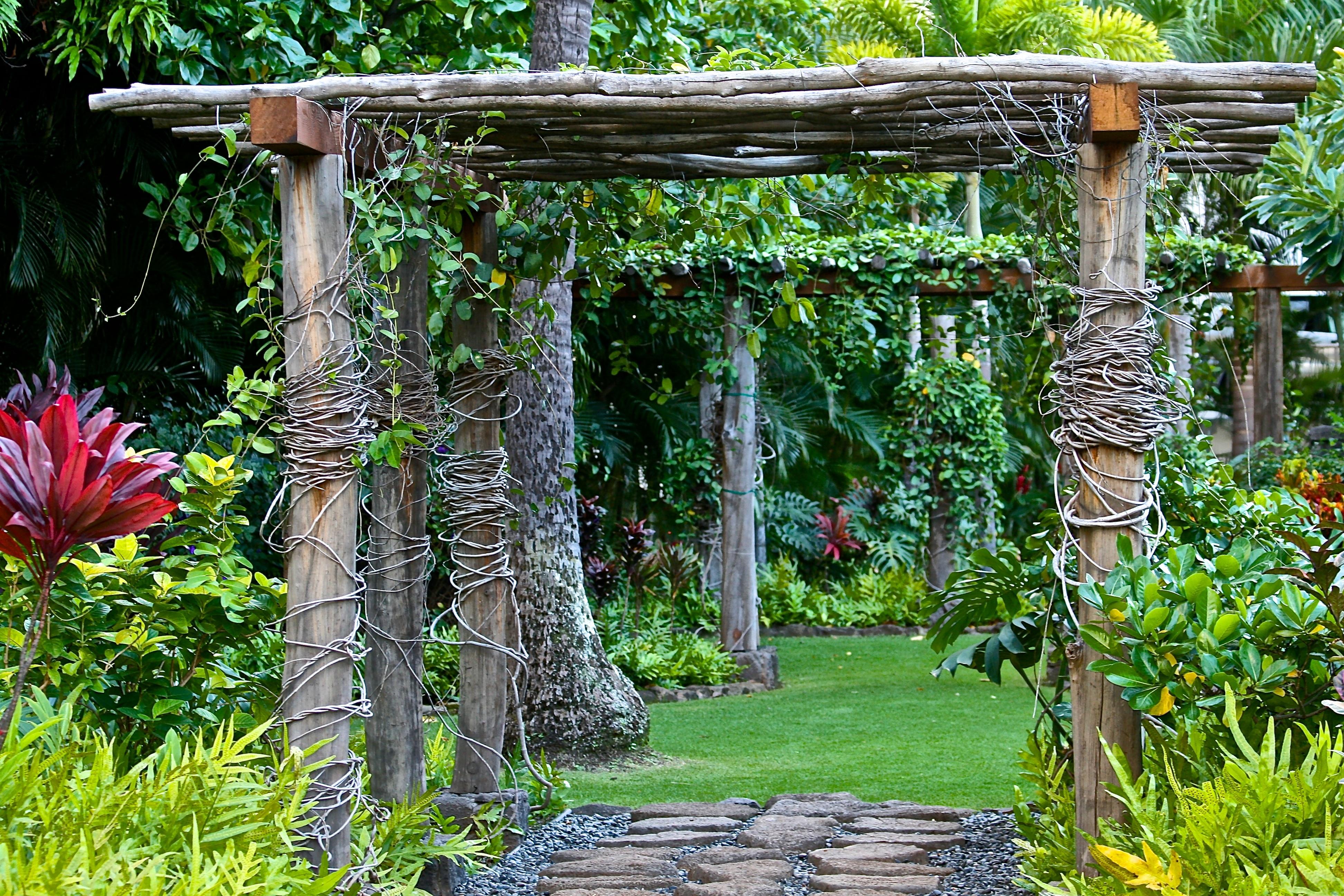 landschaft gras holz blume grn dschungel hinterhof botanik garten pflanzen bume entspannung entwurf privatgelnde botanischer garten - Hinterhoflandschaften Designs