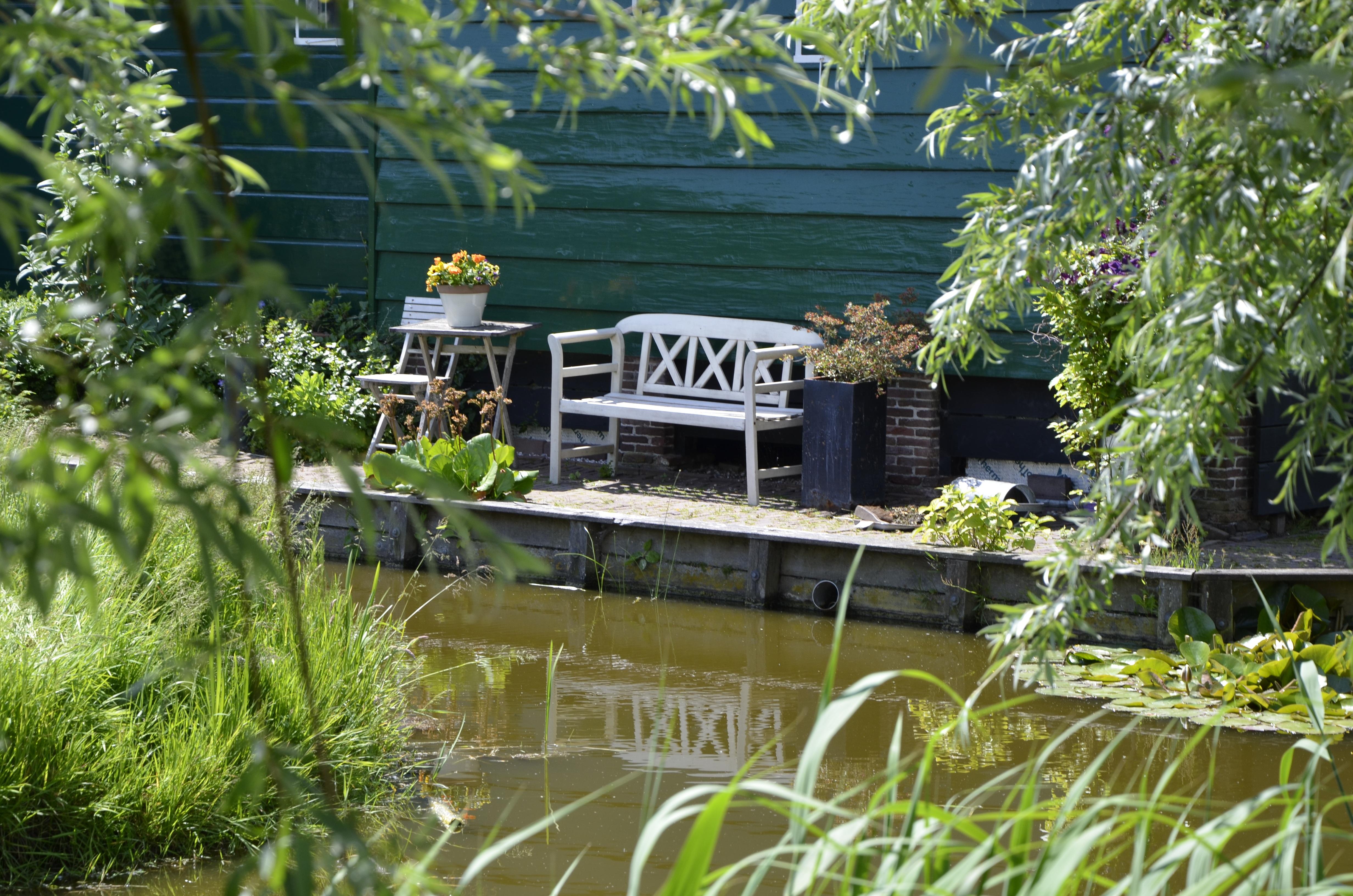 Landschaft Wandern Rasen Blume Stadt Zuhause Ferien Reise Gehen Teich  Europa Pool Hütte Urlaub Hinterhof Garten