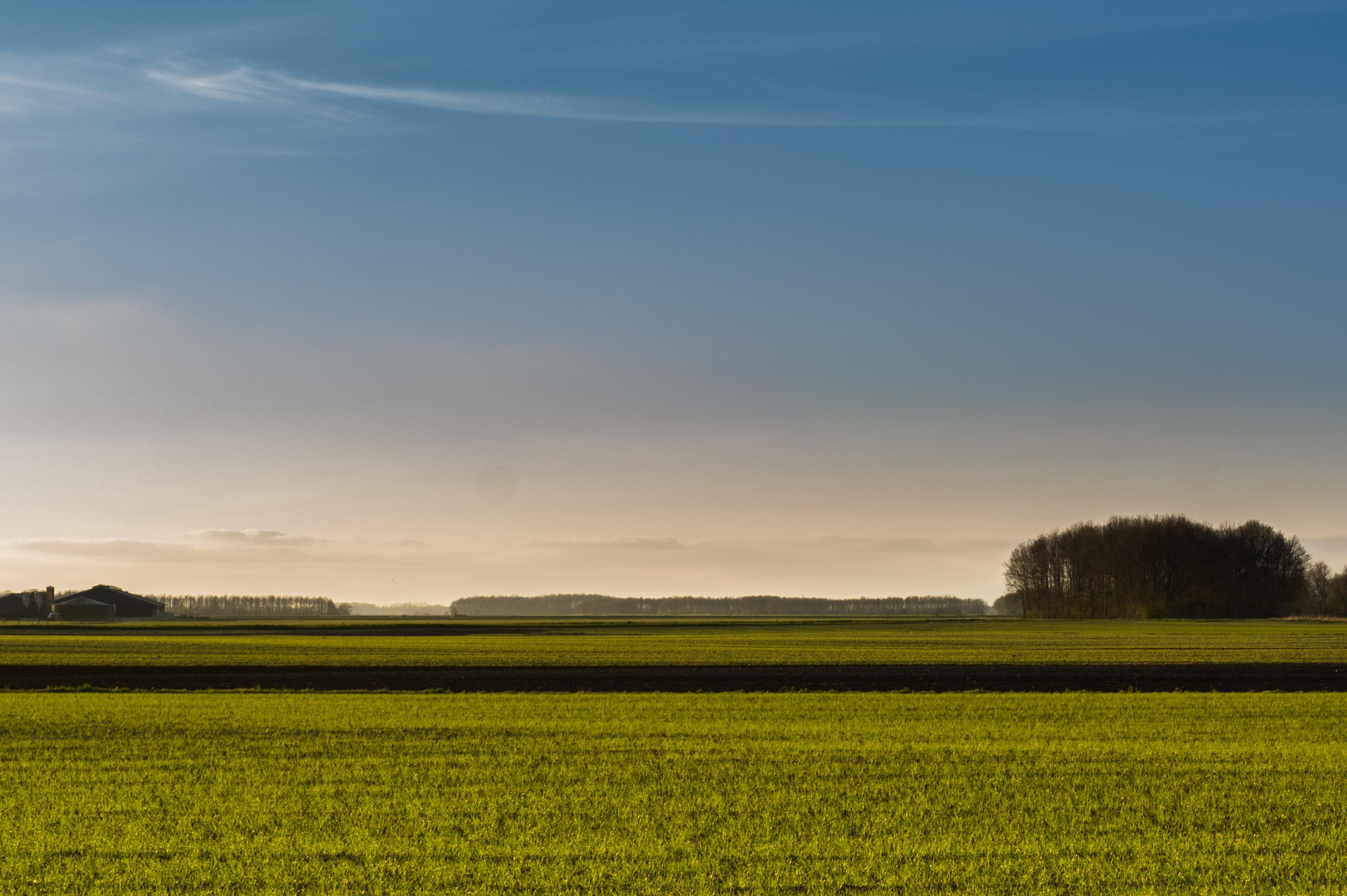 Images gratuites paysage horizon nuage plante ciel for Agence horizon paysage