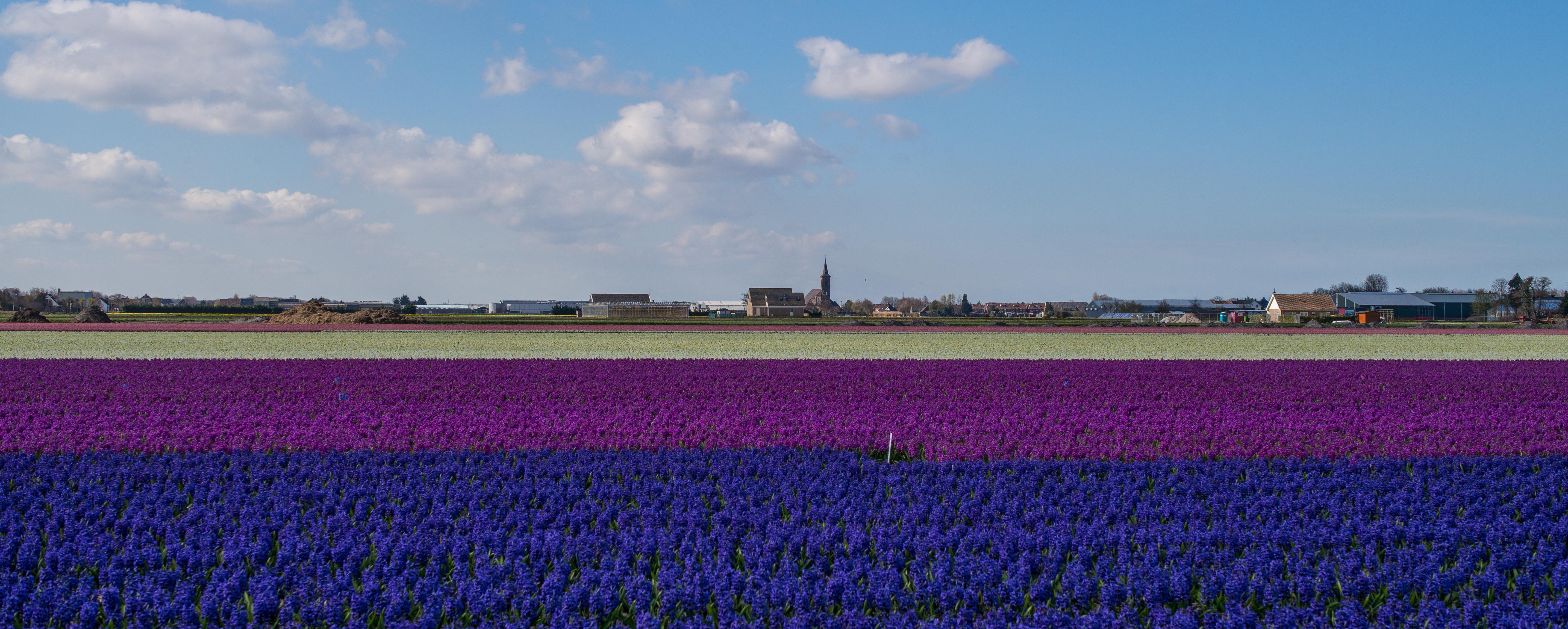 Free Images Landscape Horizon Sky White Field Farm Meadow