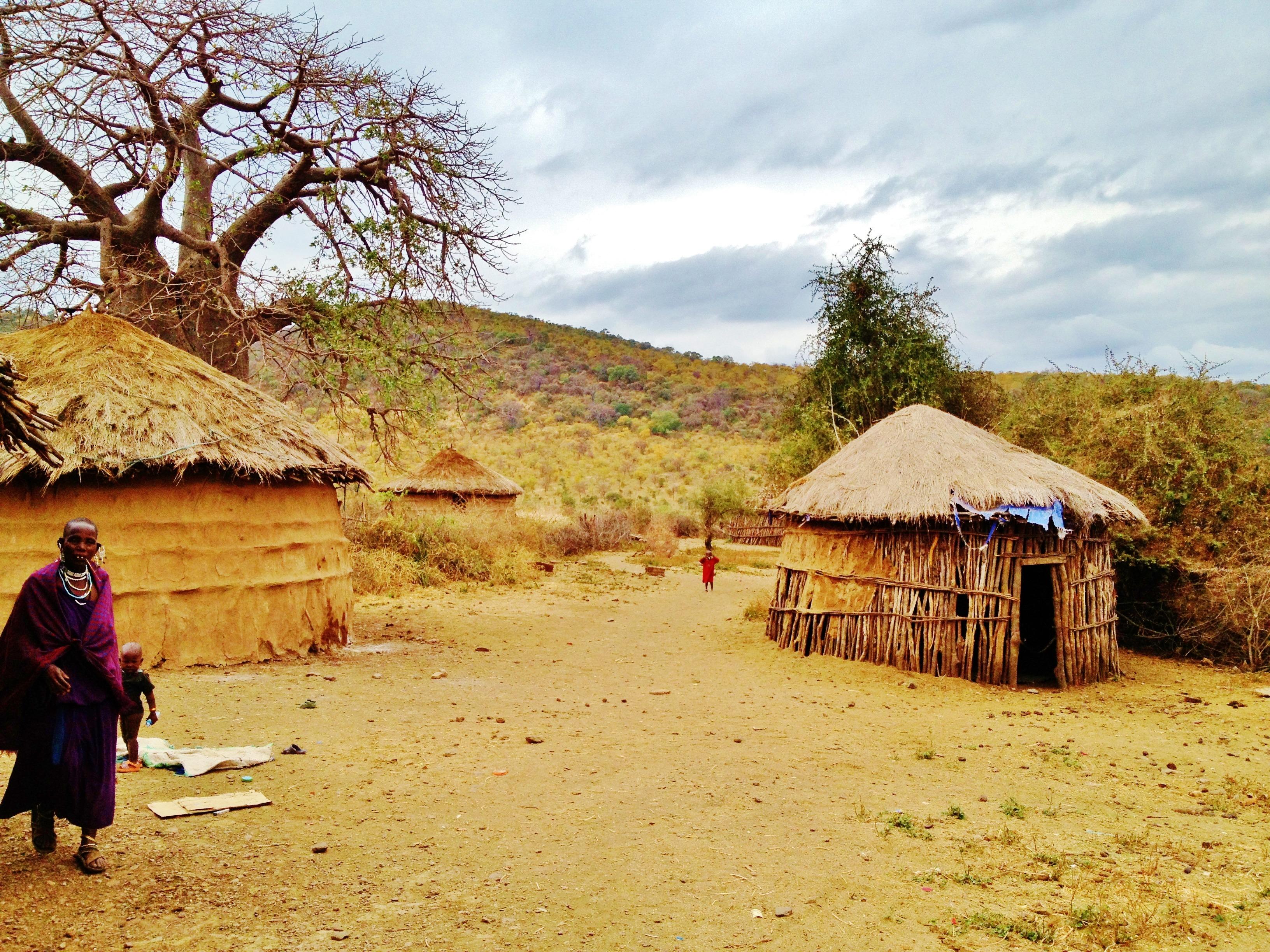 Paysage maison cabane sec village afrique culture tanzanie africain traditionnel zone rurale boma massai land