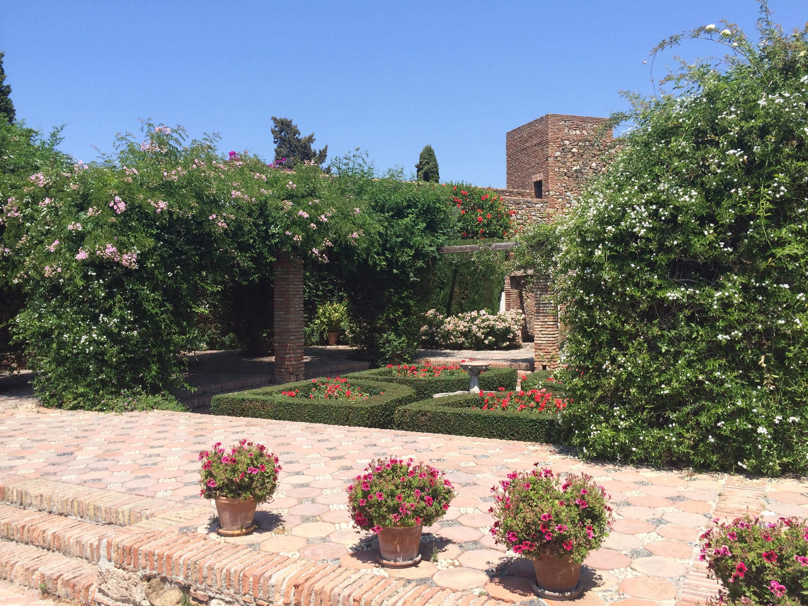 Landschaft Rasen Villa Blume Hinterhof Eigentum Botanik Garten Spanien  Landschaftsbau Hof Strauch Immobilien Garten Malaga Grundeigentum