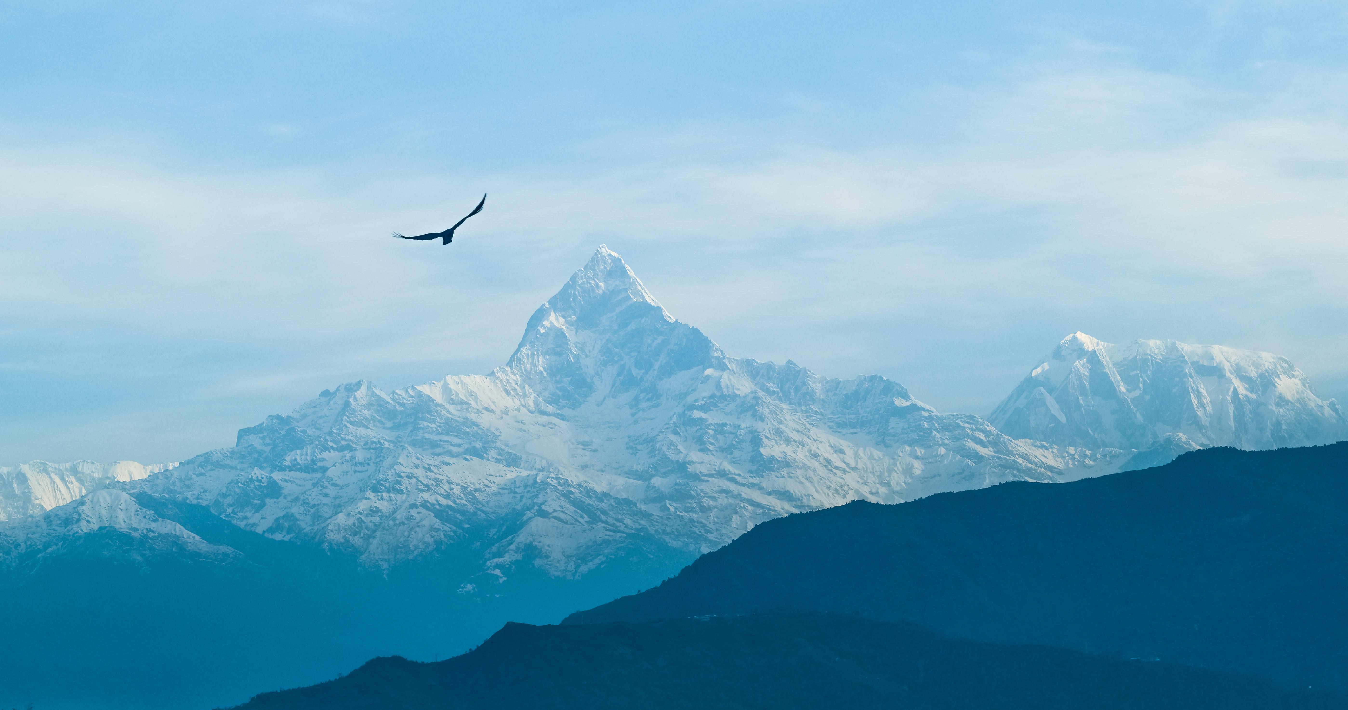 Gambar Pemandangan Gunung Burung Langit Pegunungan Berkabut